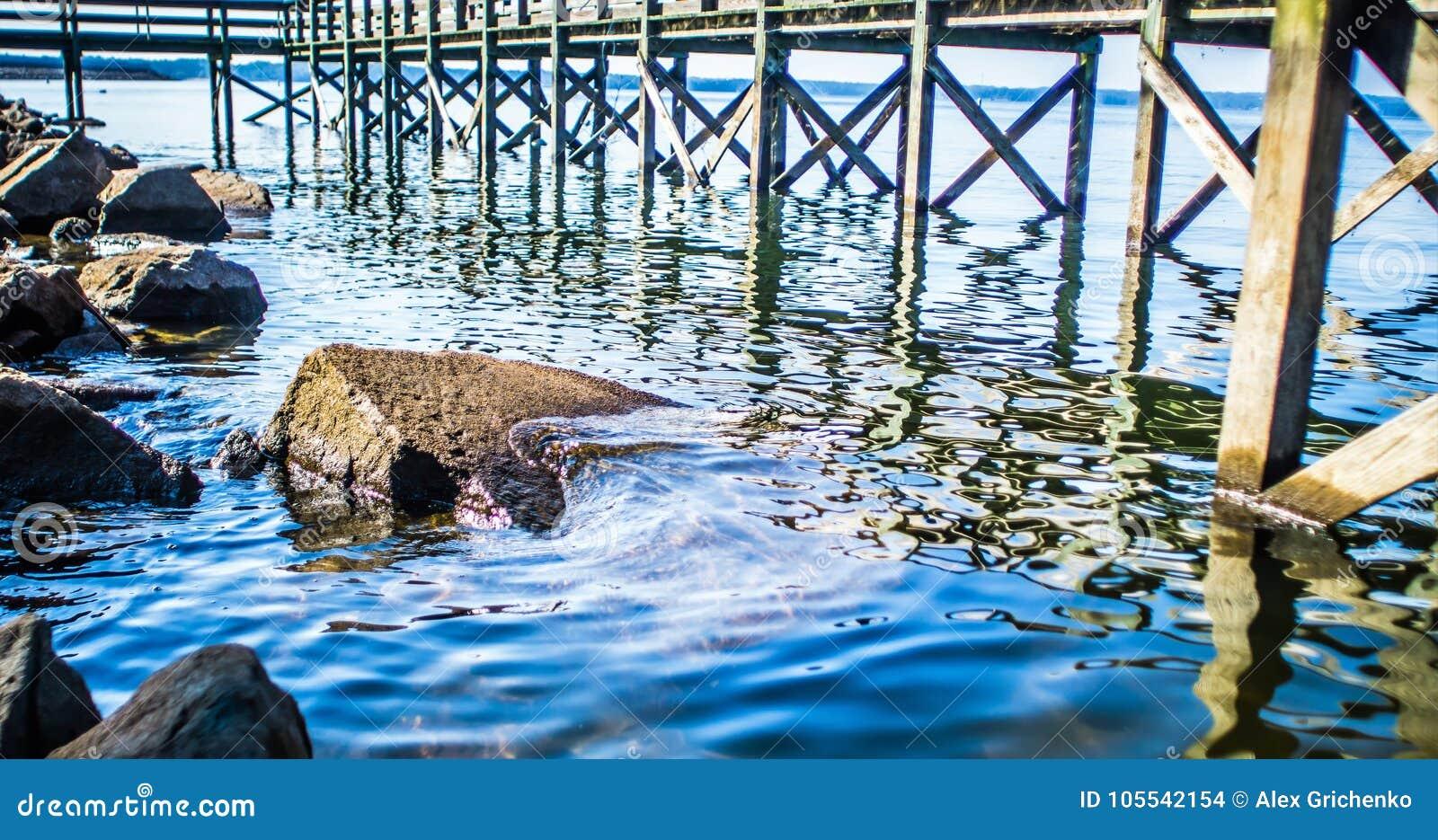 Küste und Pier Seemurrays South Carolina