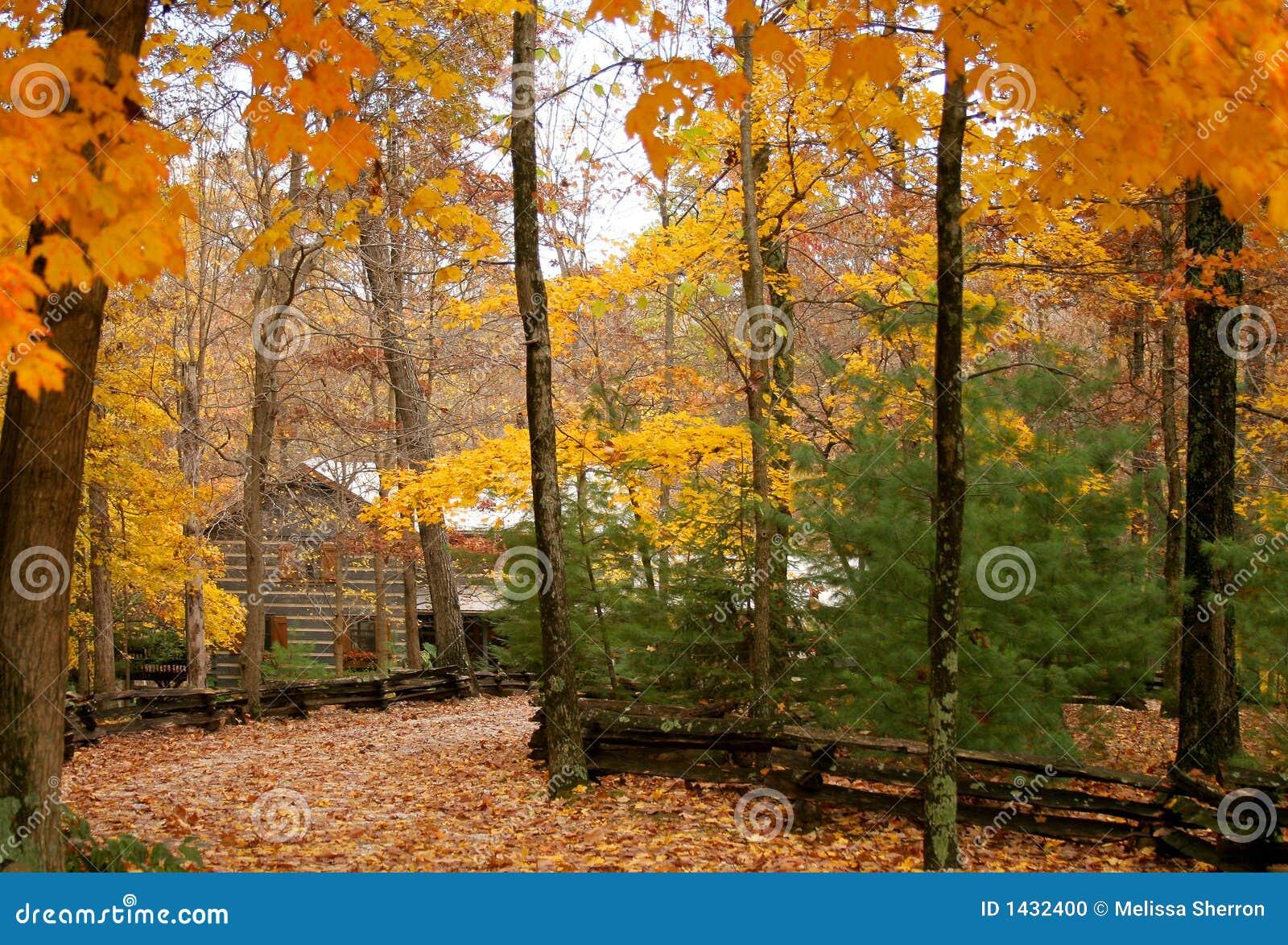 Kabine im Holz mit Herbst