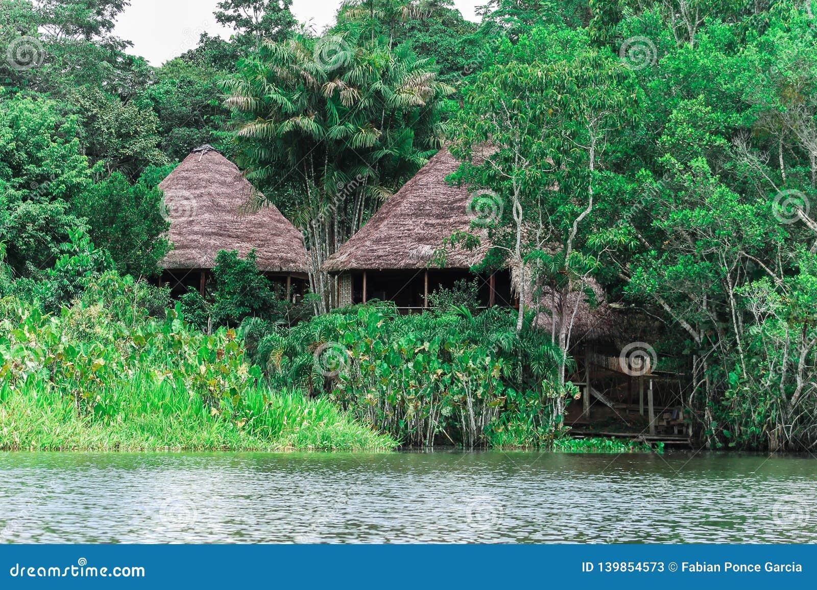 Kabiner längs floden i amasonen