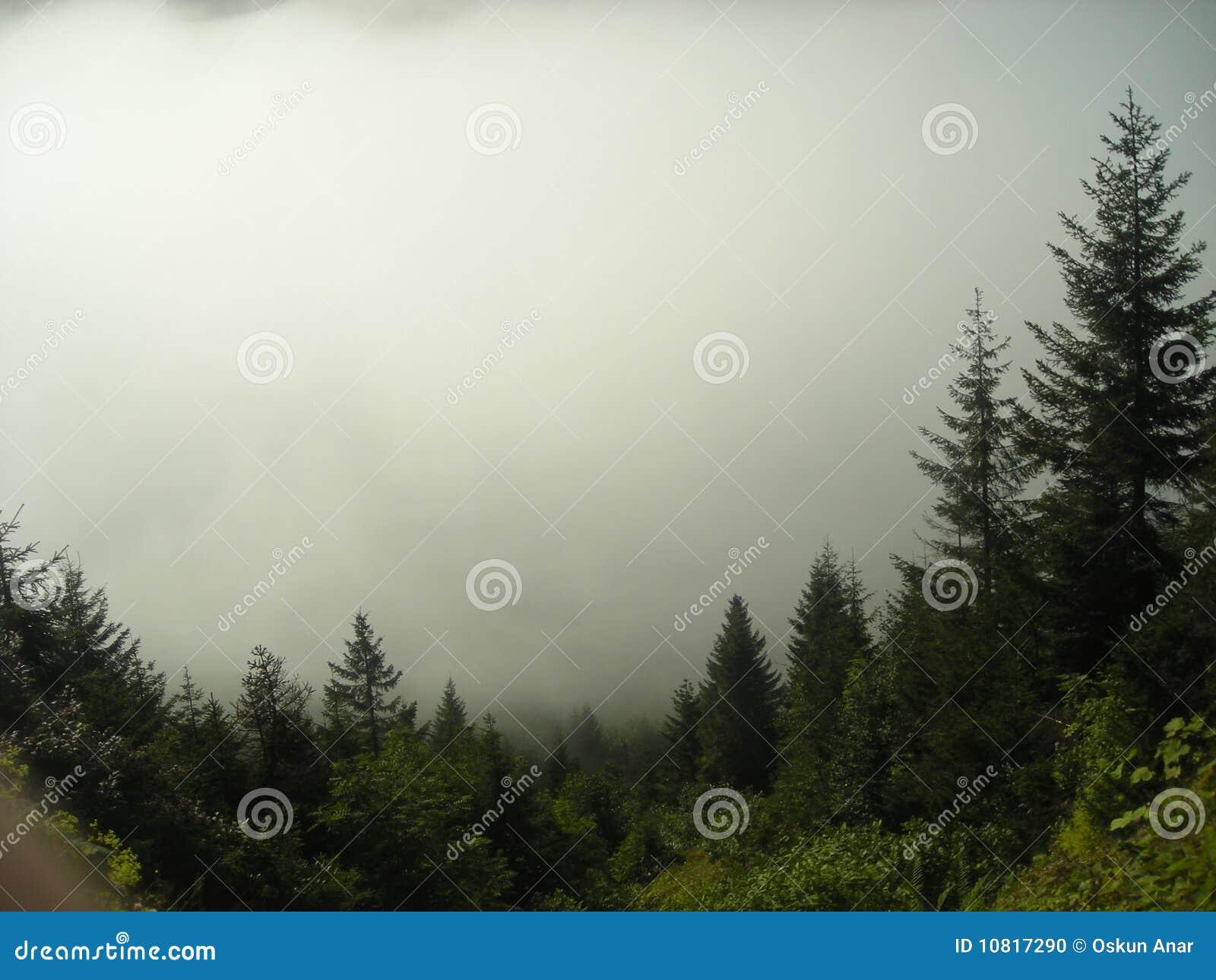 Kackar山
