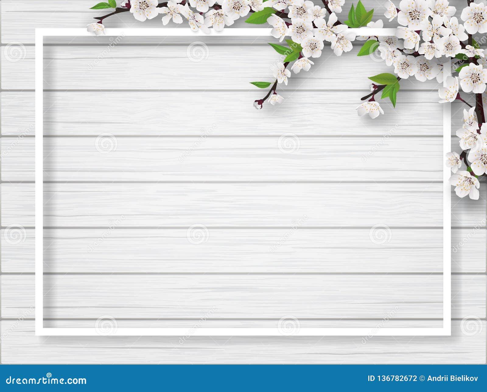 Kader met takken van de de lente de tot bloei komende kers