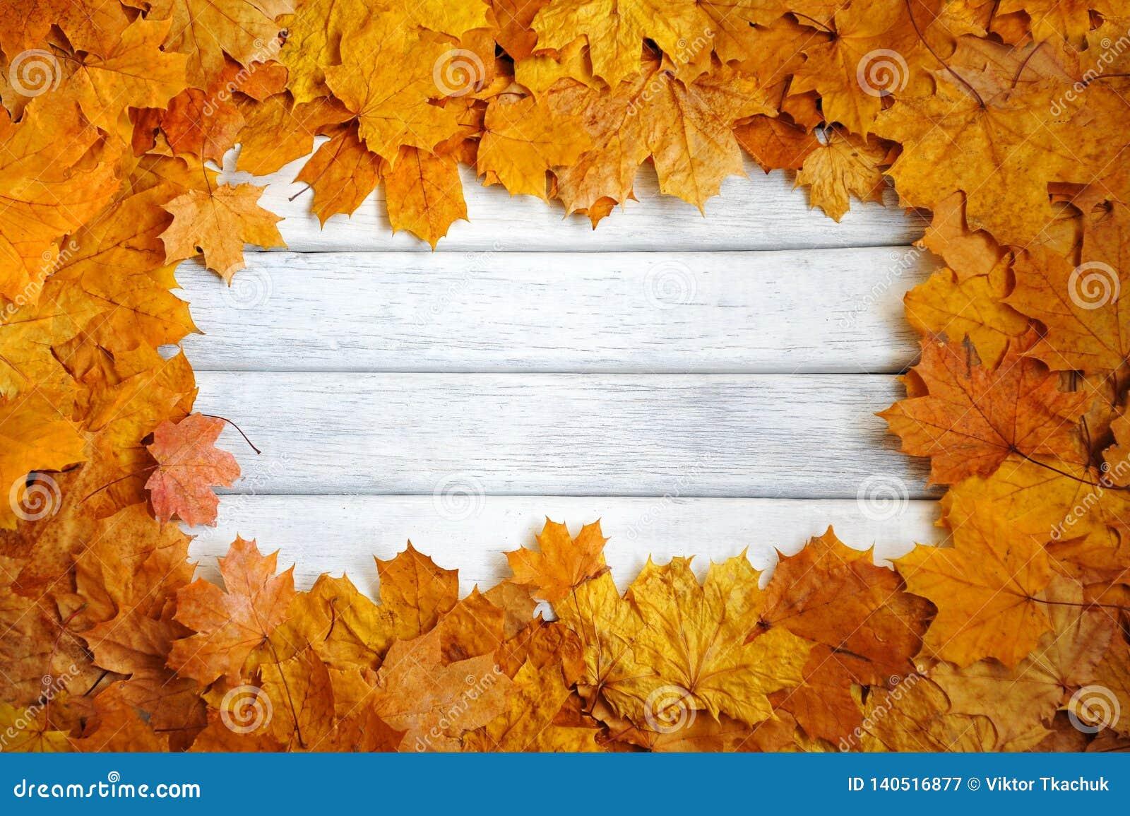 Kader van de herfst, gele bladeren op een witte, houten oppervlakte