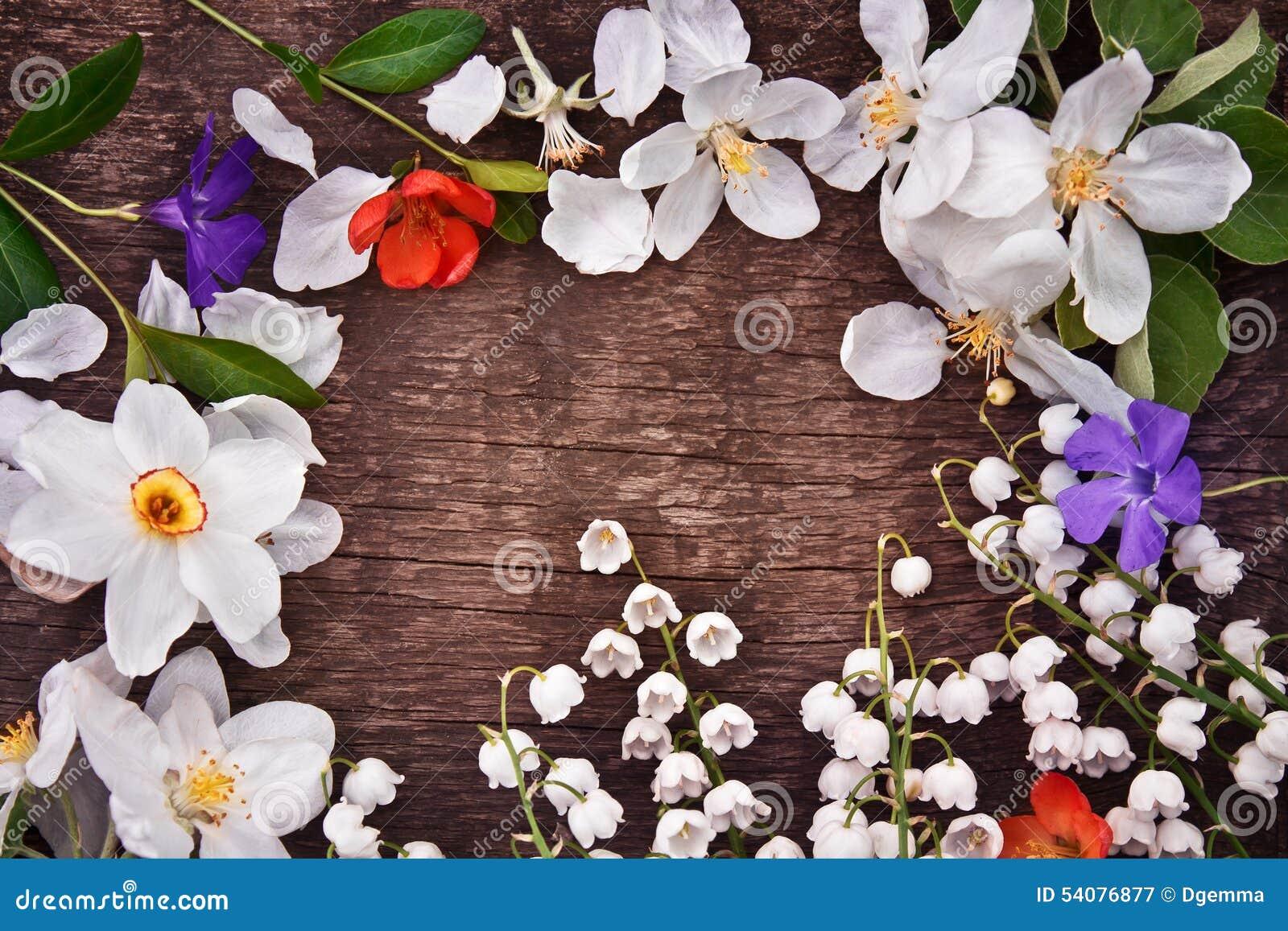 Kader van de lentebloemen
