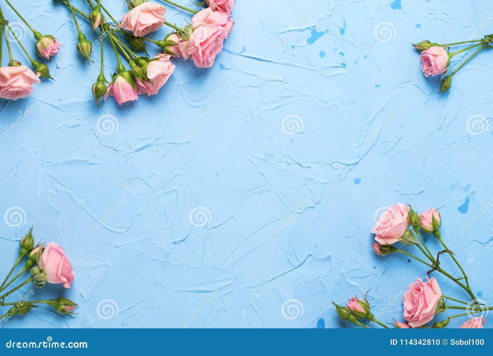 Kader van roze rozenbloemen op lichtblauwe geweven achtergrond