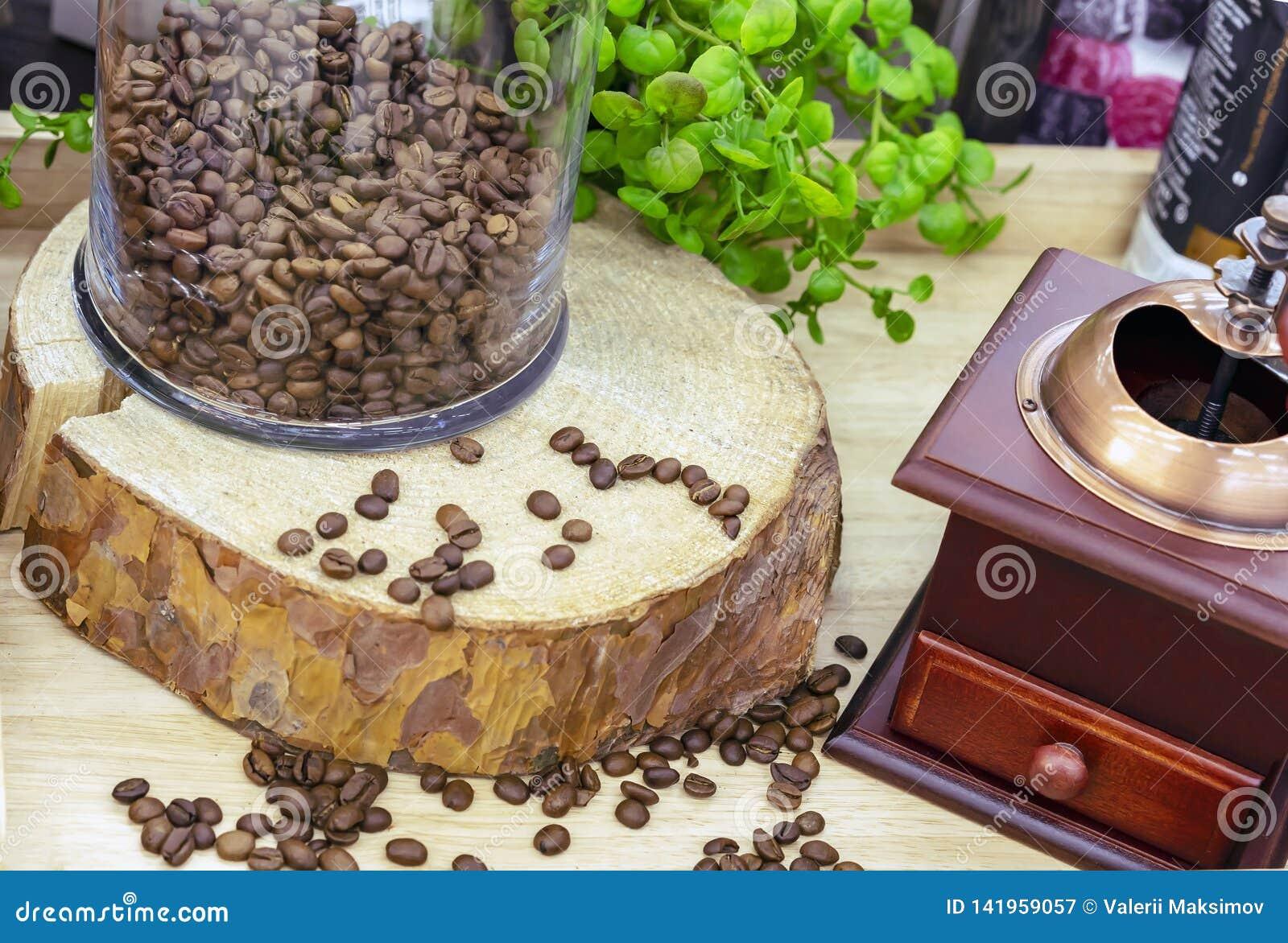 Kaffeebohnen auf dem Sägeschnitt des Baums nahe bei der Kaffeemühle