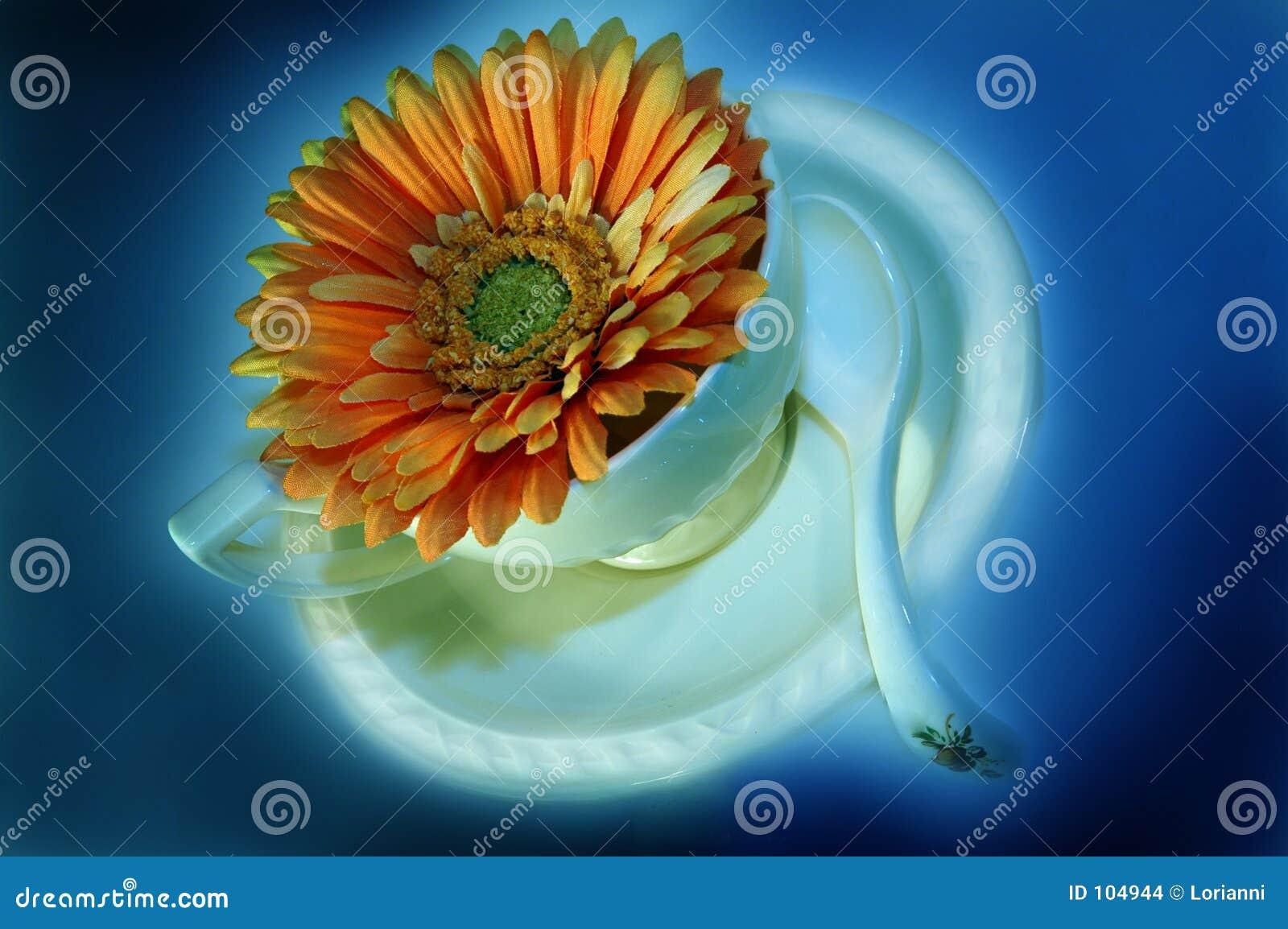 Kaffeetasse mit Blume 5