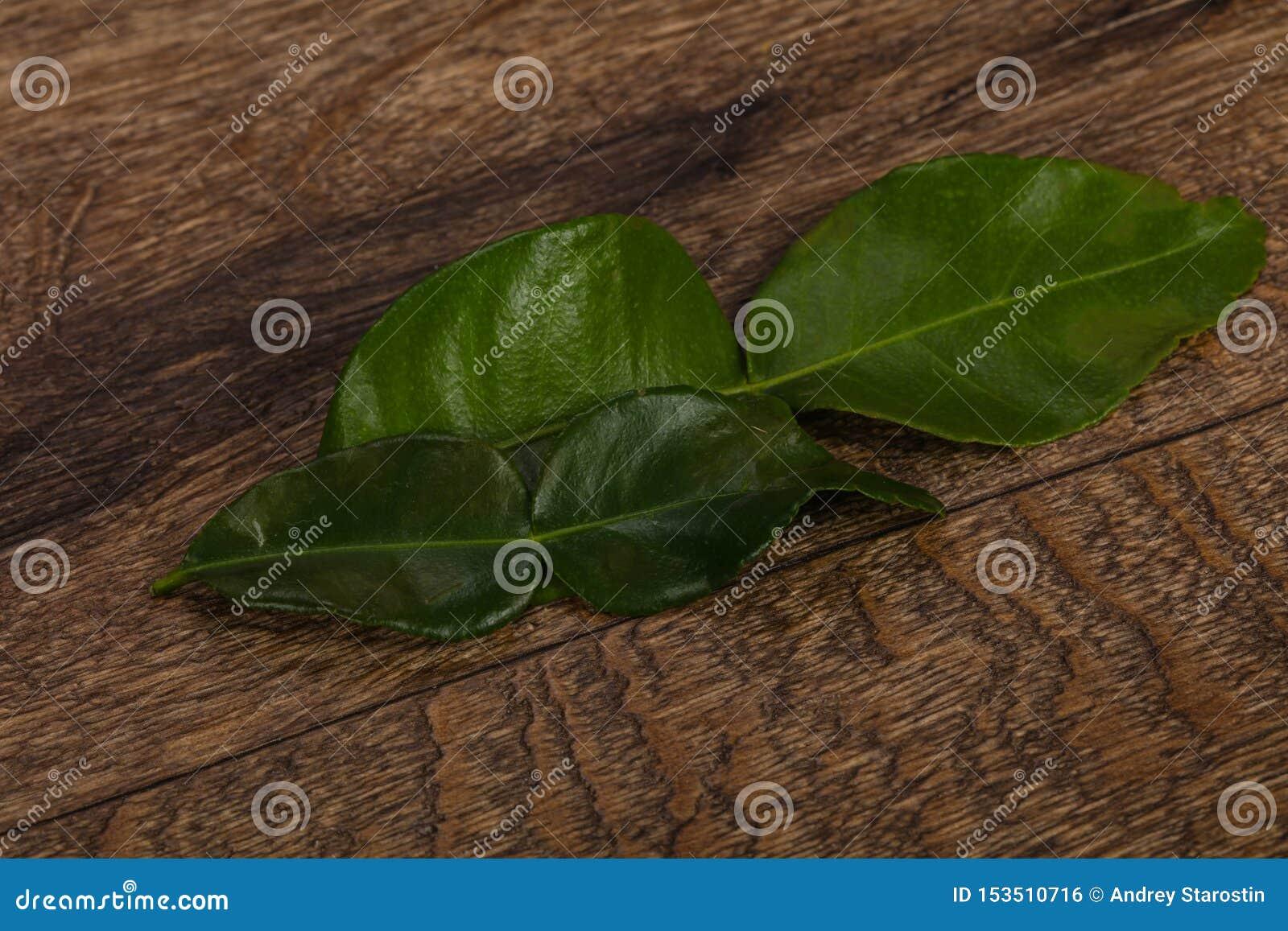 Kafir lime leaves - addition for Asian cuisine