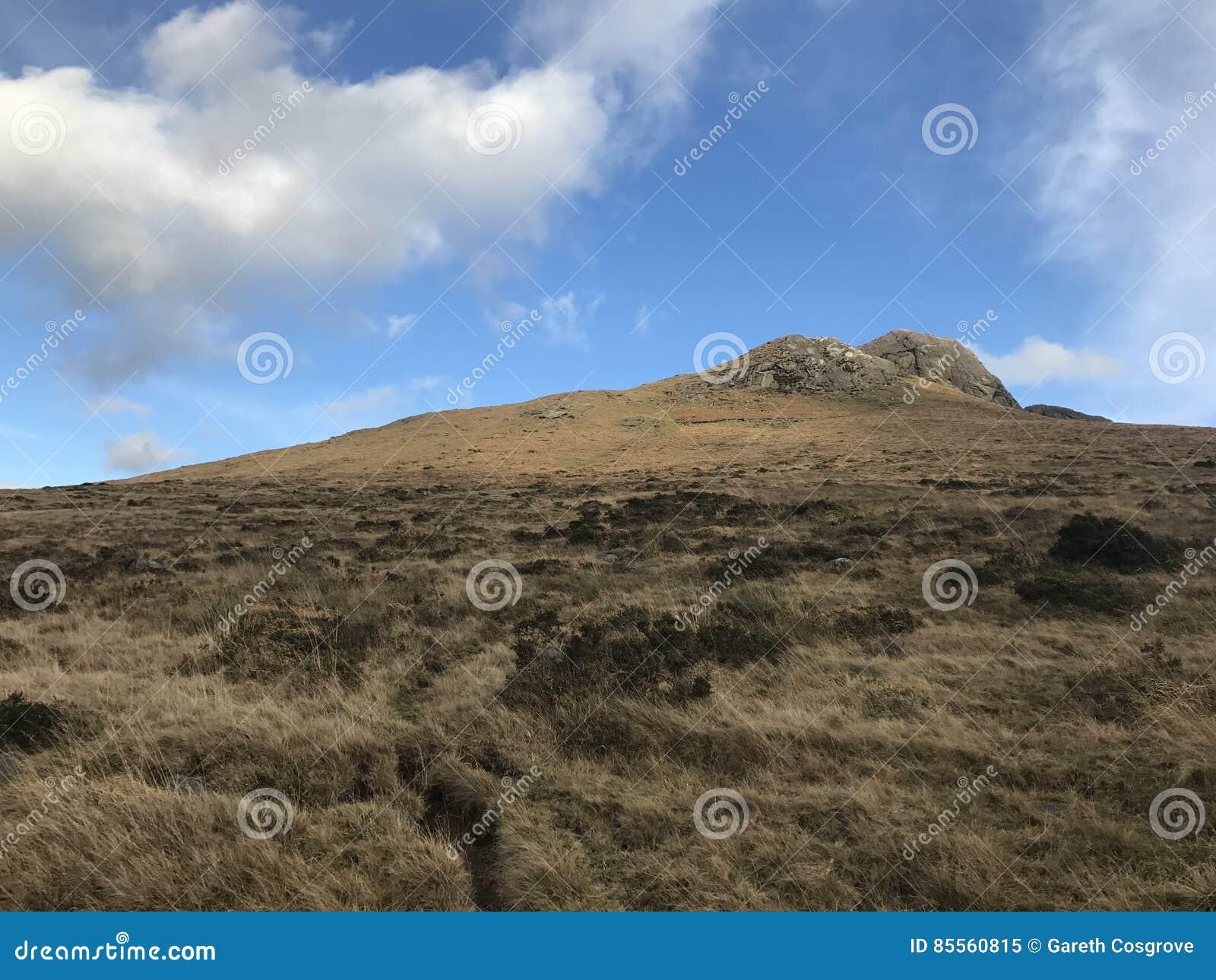 Kahles Hochland in Nordirland