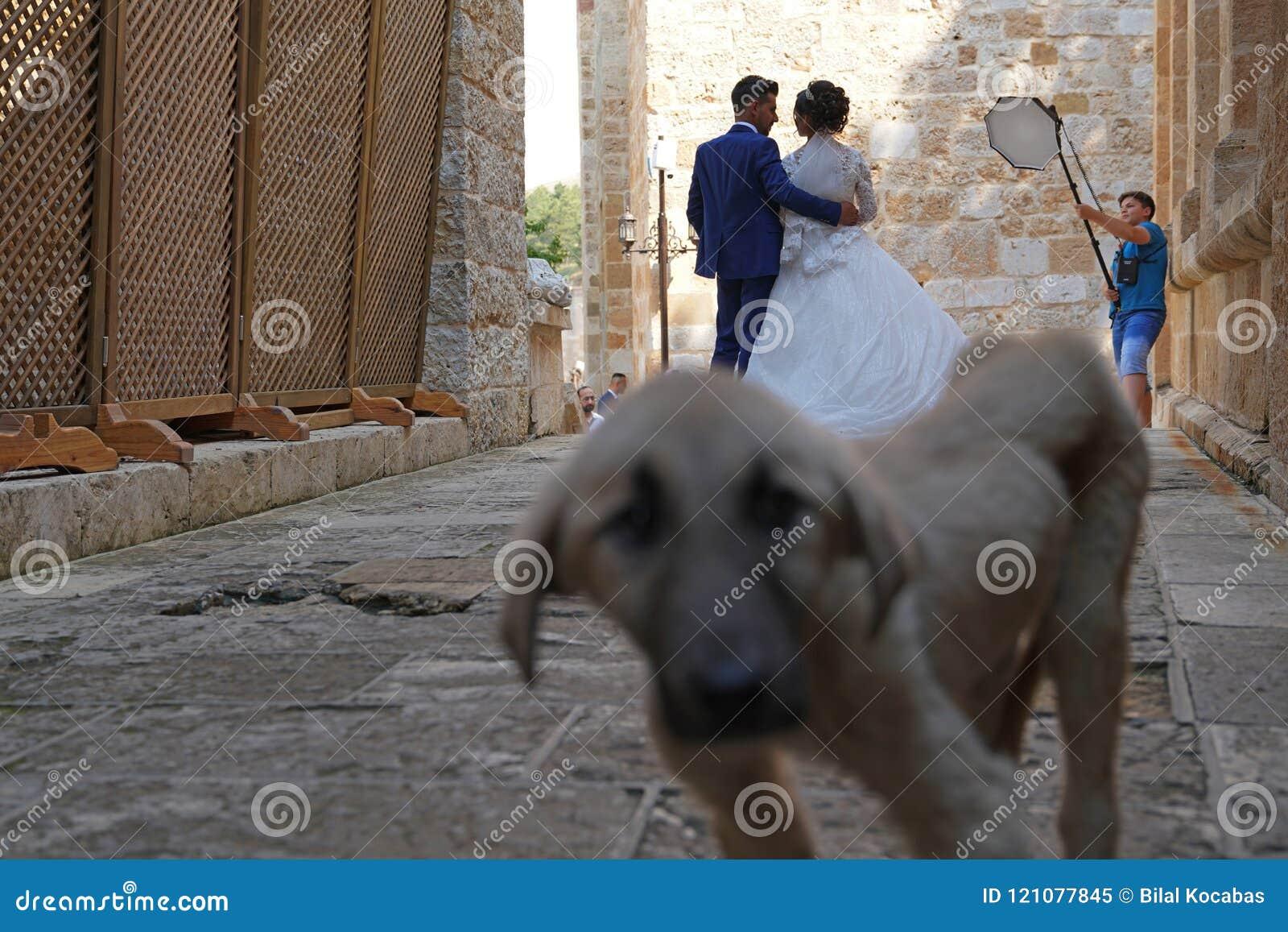 Kahramanmaras, Turchia 19 giugno 2018: Retrovisione della sposa e dello sposo
