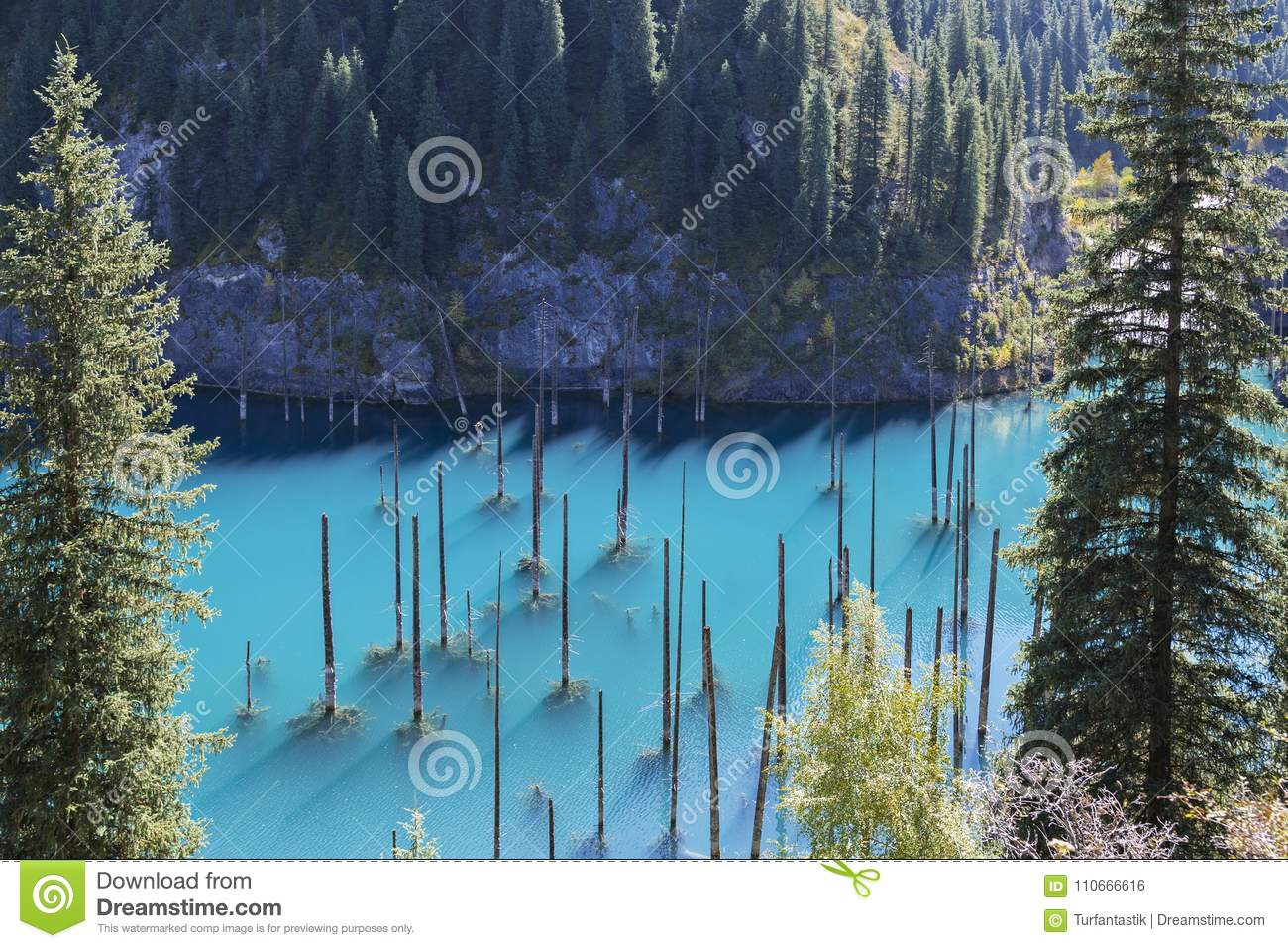 Kaindy Lake with spruce tree trunks coming out from its water, in Kazakhstan.