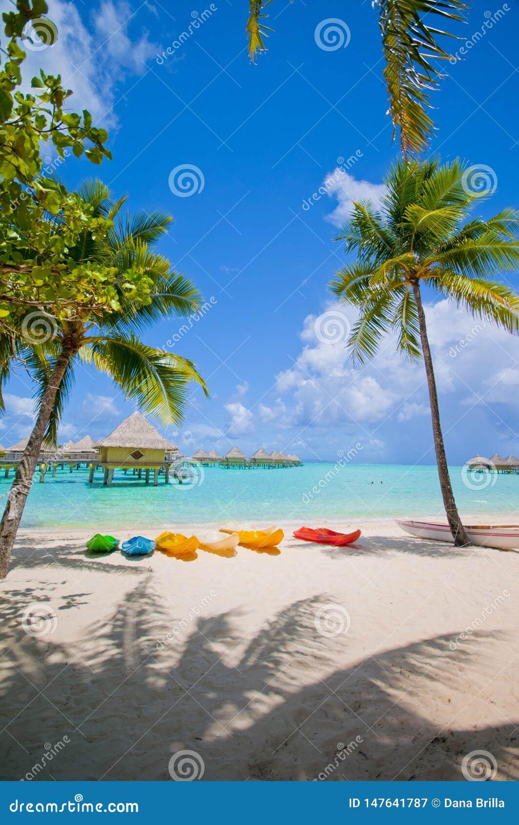Kajaker på stranden i Bora Bora