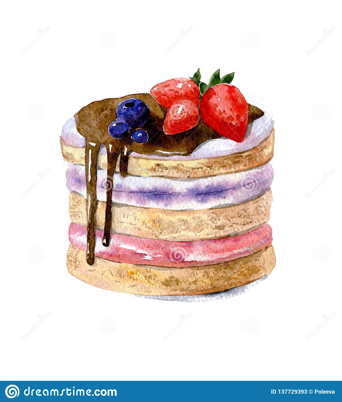 Kaka med lager, luddkräm som dekoreras med choklad och jordgubbar Vattenfärgillustration som isoleras på vit bakgrund