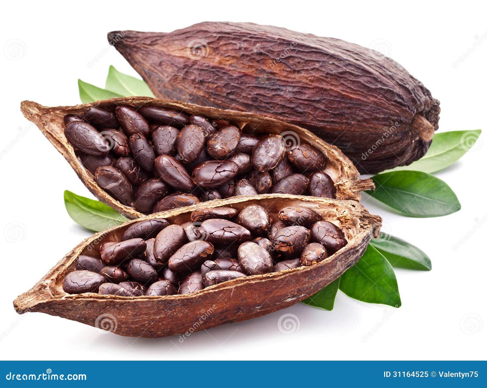 Kakaowy strąk