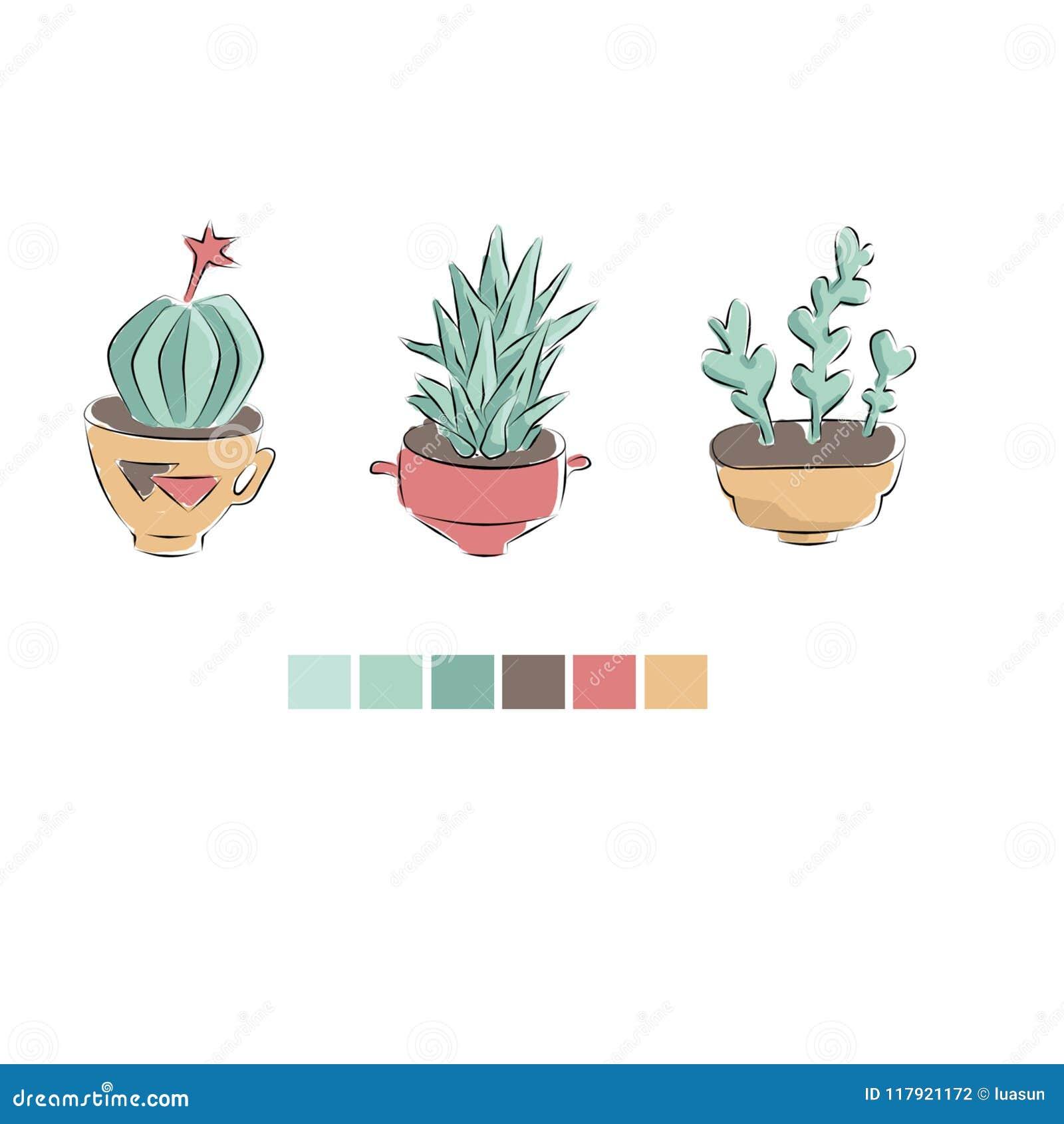 Kaktus in der mexikanischen Art