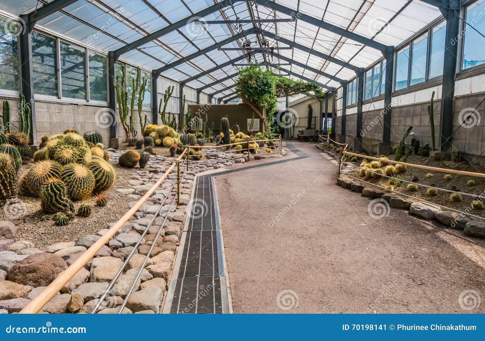 Kaktushus i Yama Jigoku