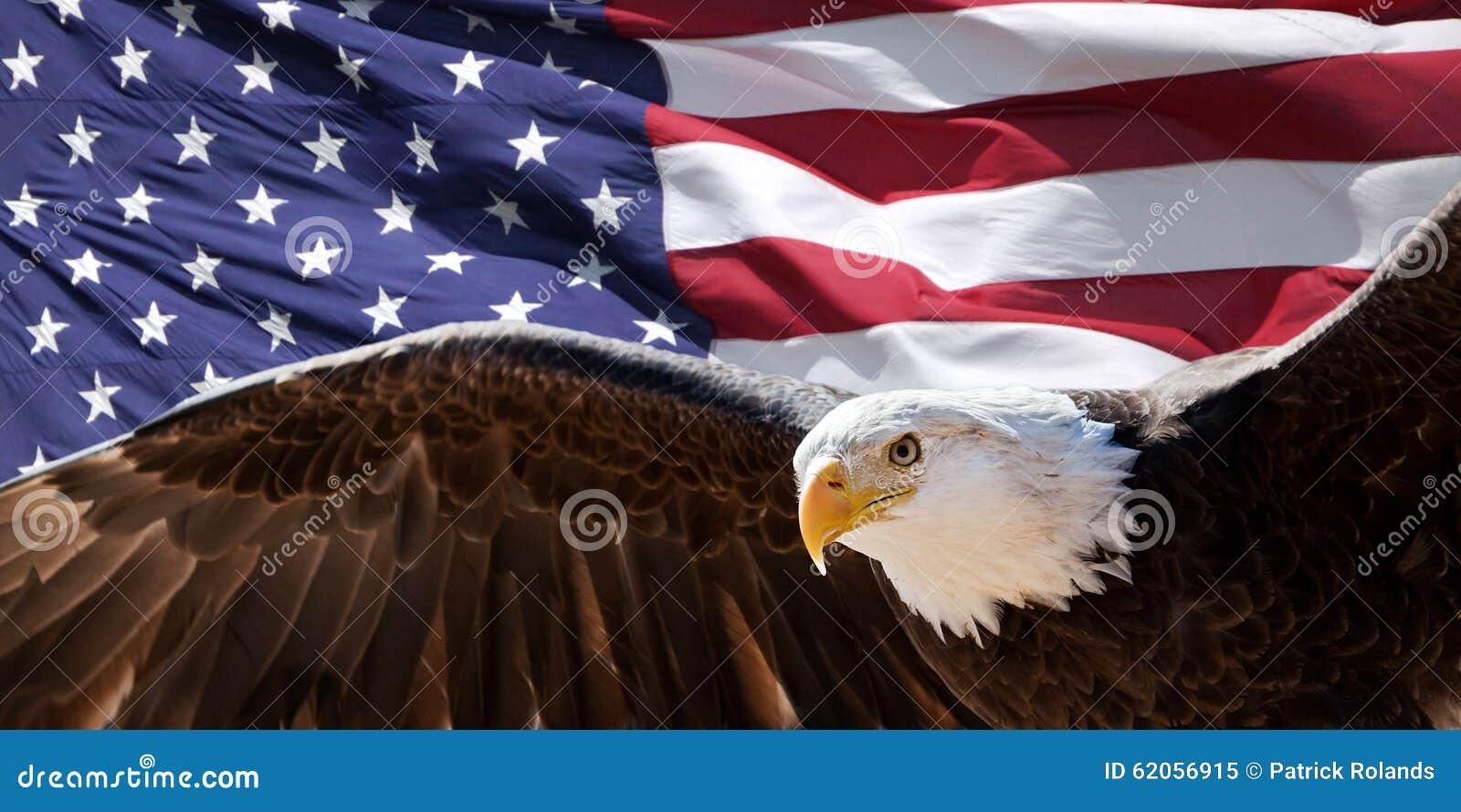 Kale adelaar en vlag