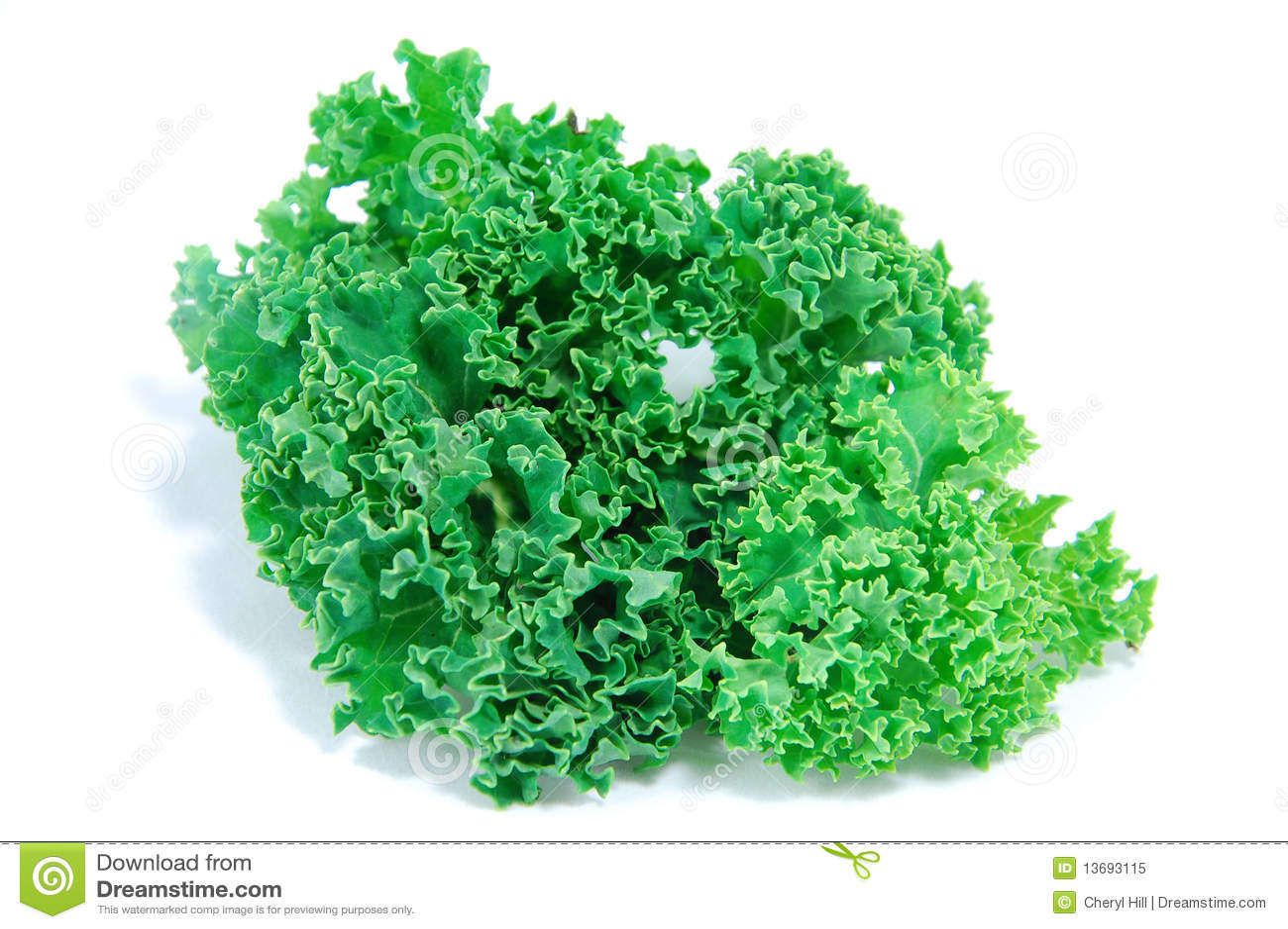 Lettuce Clipart