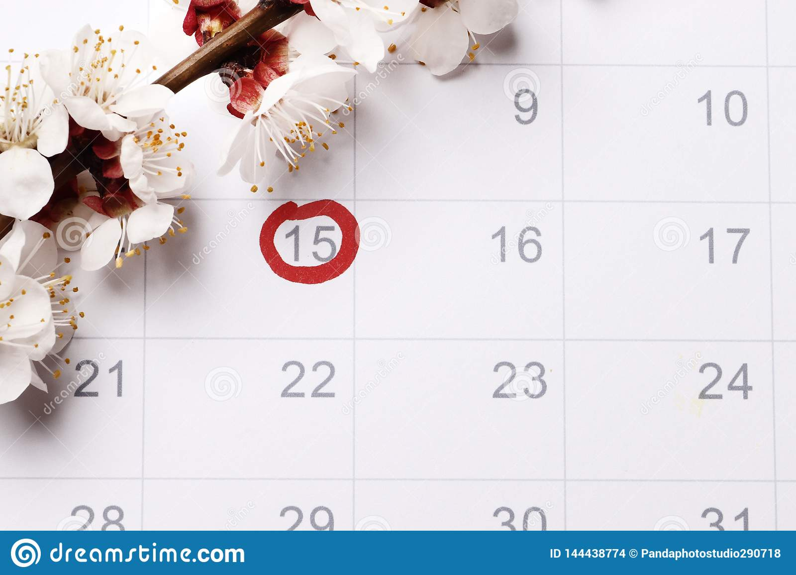 Kalenderplanläggningen av havandeskap som försöker att ha att behandla som ett barn