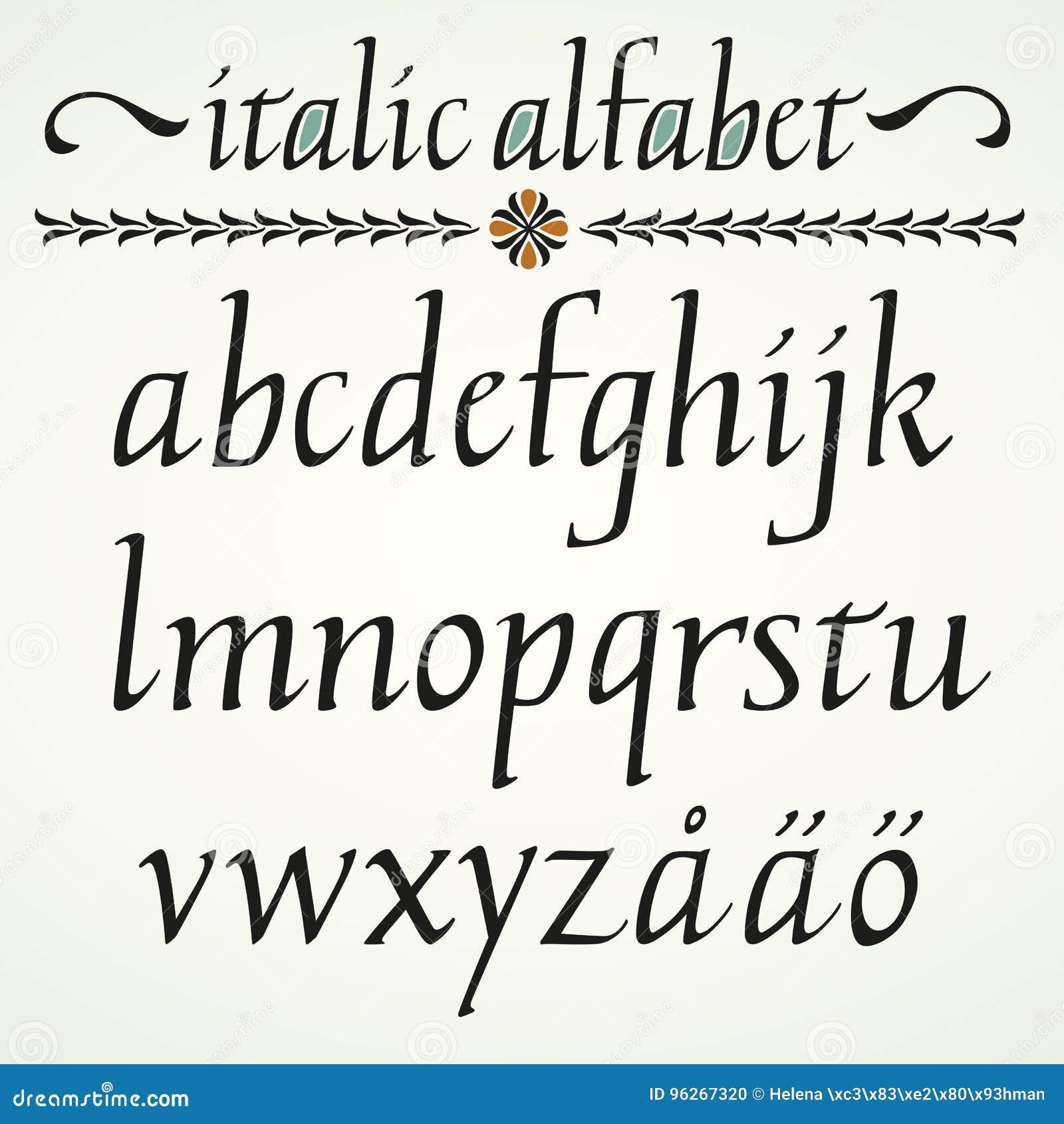 Kalligraphisches Kursives Alphabet Vektor Abbildung - Illustration ...