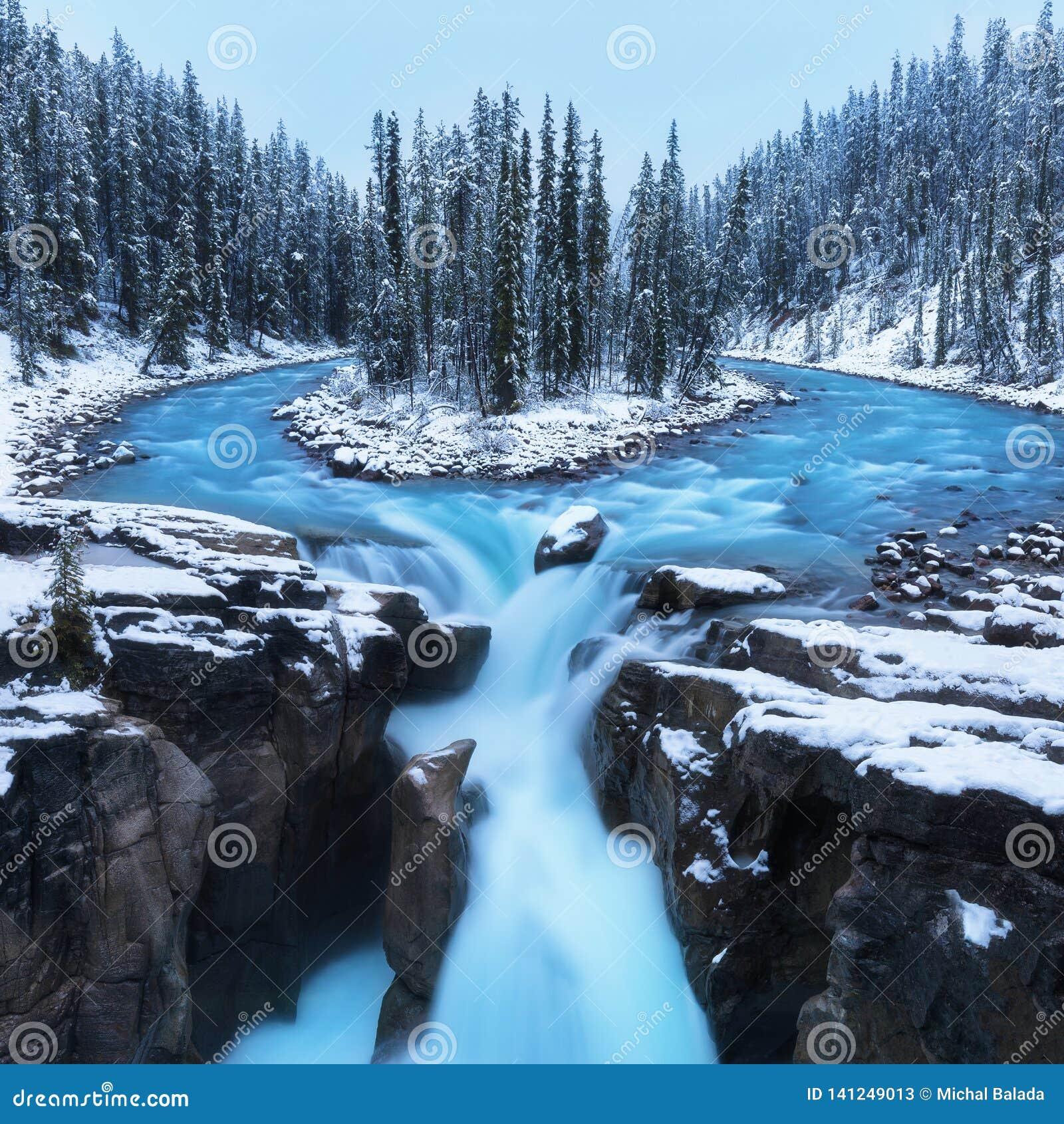 Kalte Landschaft bei Sunwapta Falls auf den Kanadier Rocky Mountains mit Schnee und Tannenbäume in der wunderbaren Landschaft und