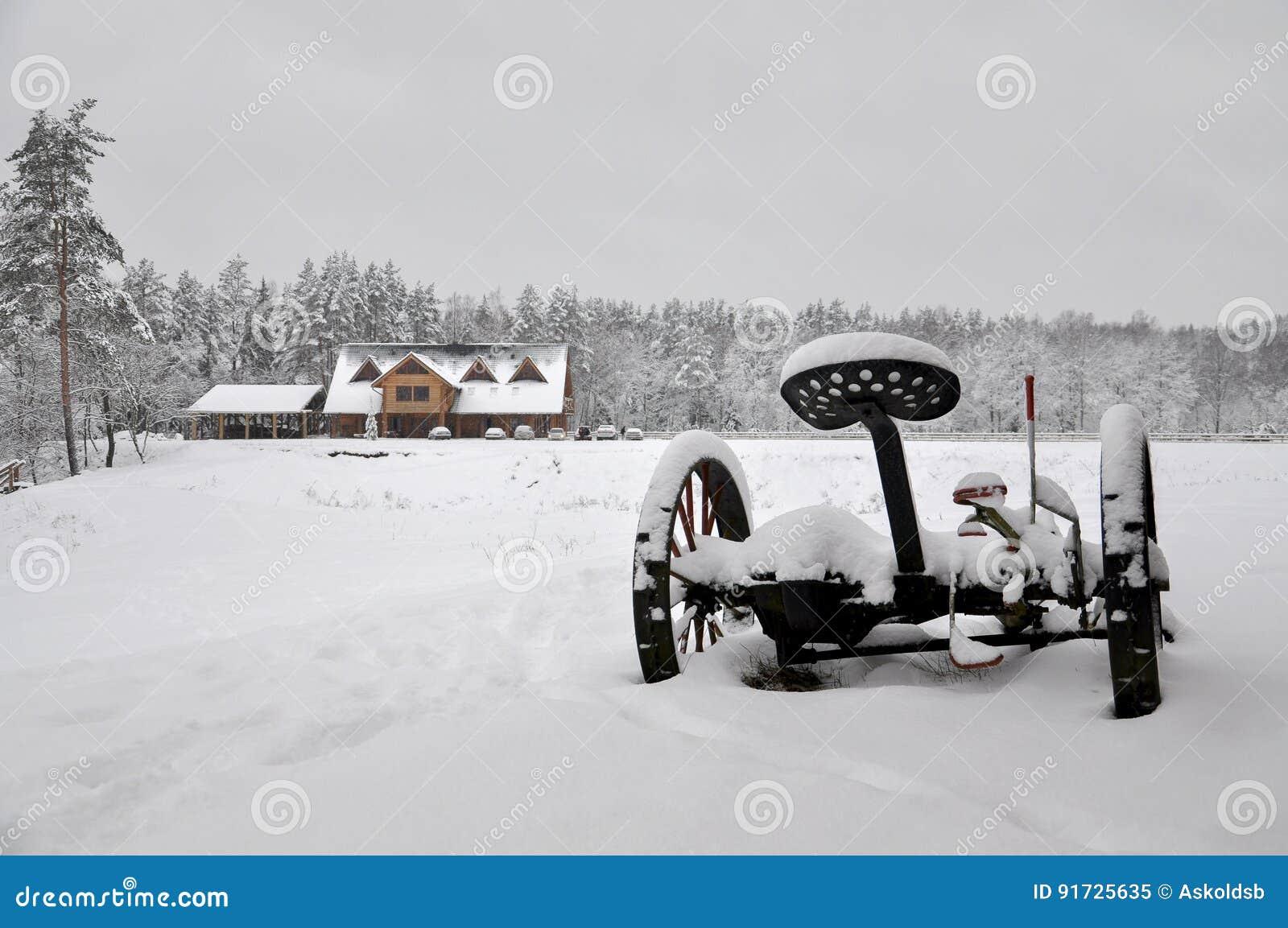 Kalte Landschaft des verschneiten Winters von ländlichen Häusern