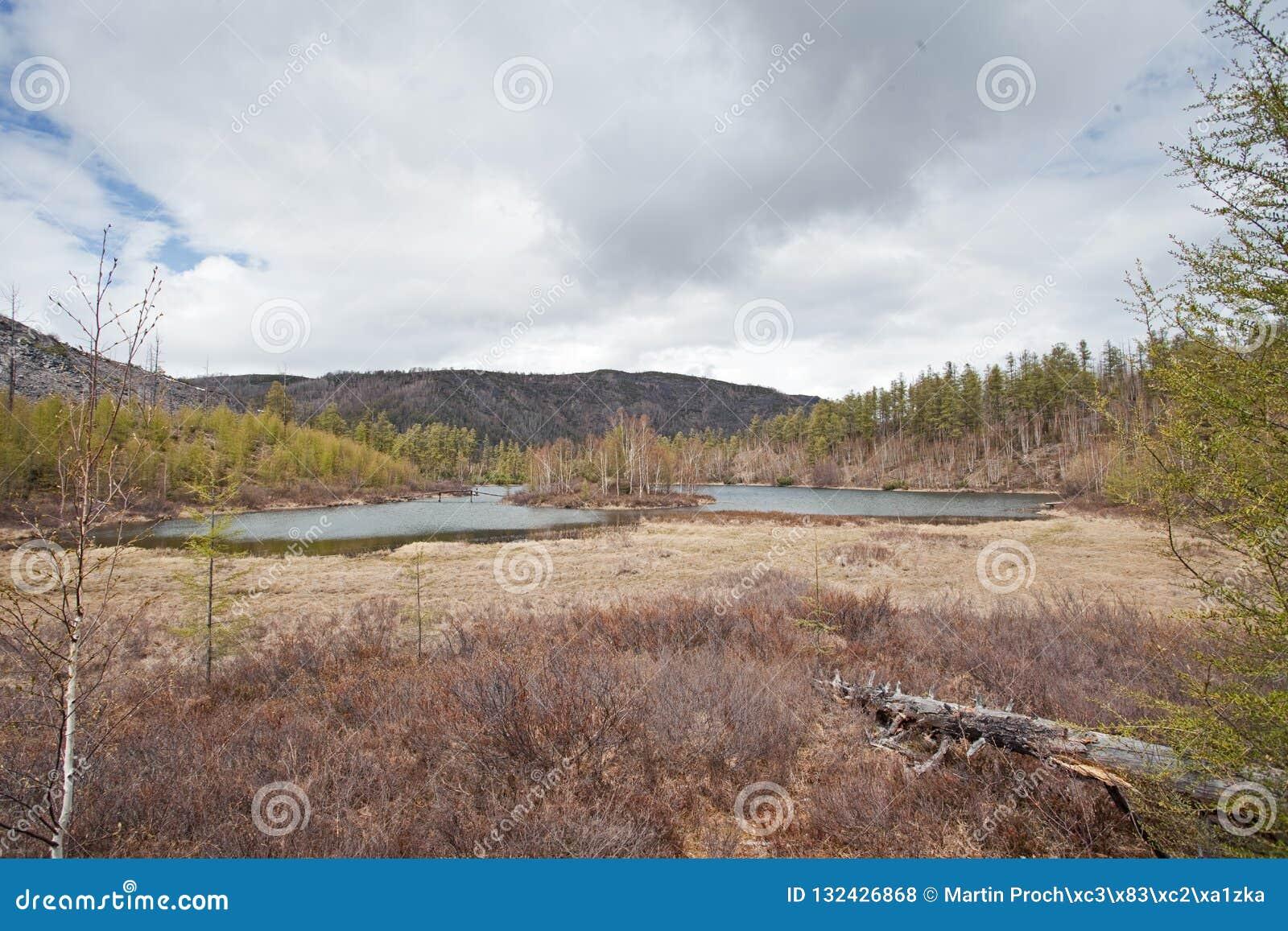 Kamchatka halvö, natur