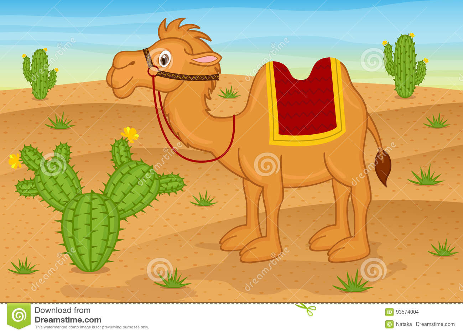 Kamel i öken