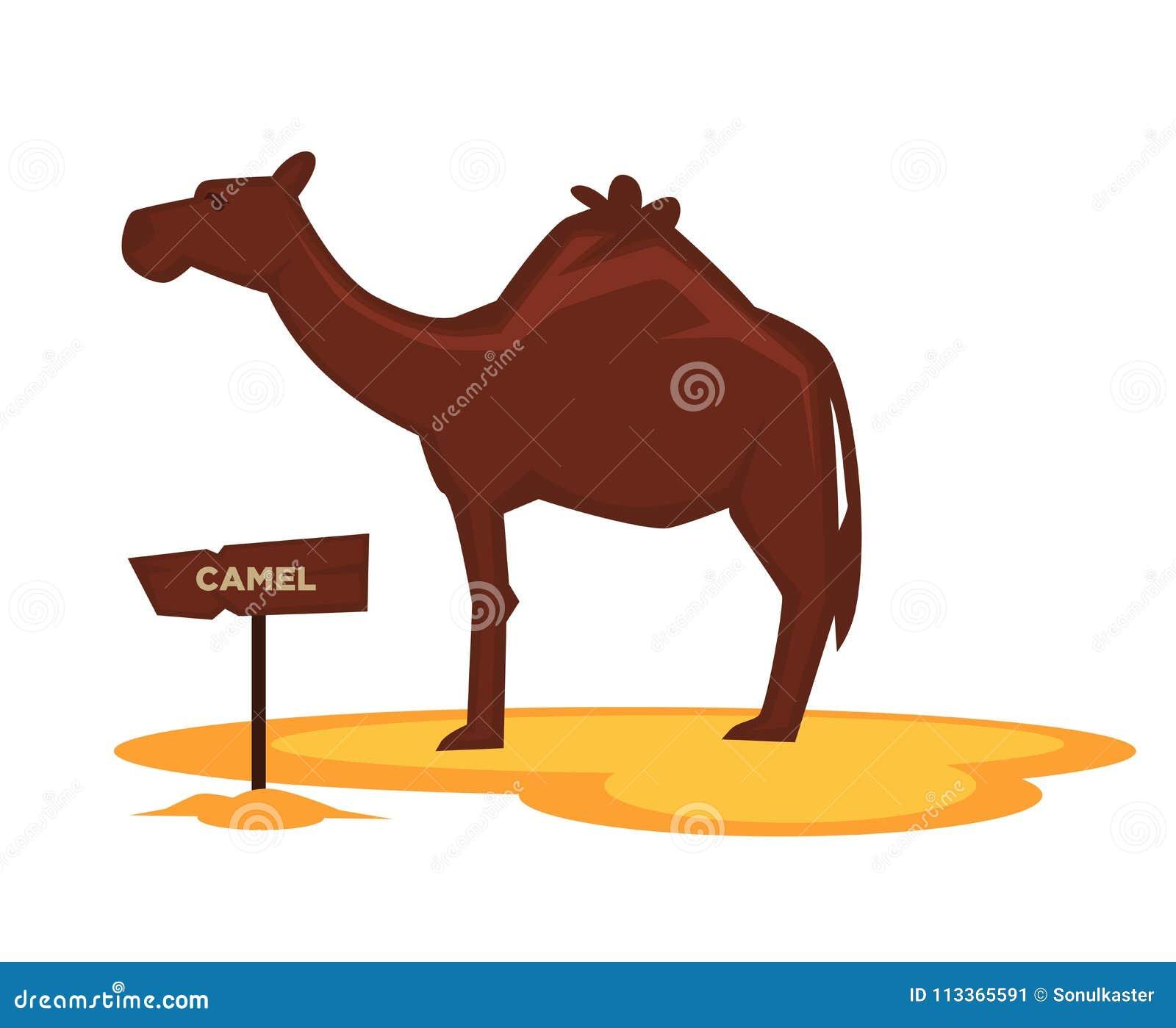Kamelzoodjuret och den träsymbolen för skyltvektortecknad film för zoologiskt parkerar