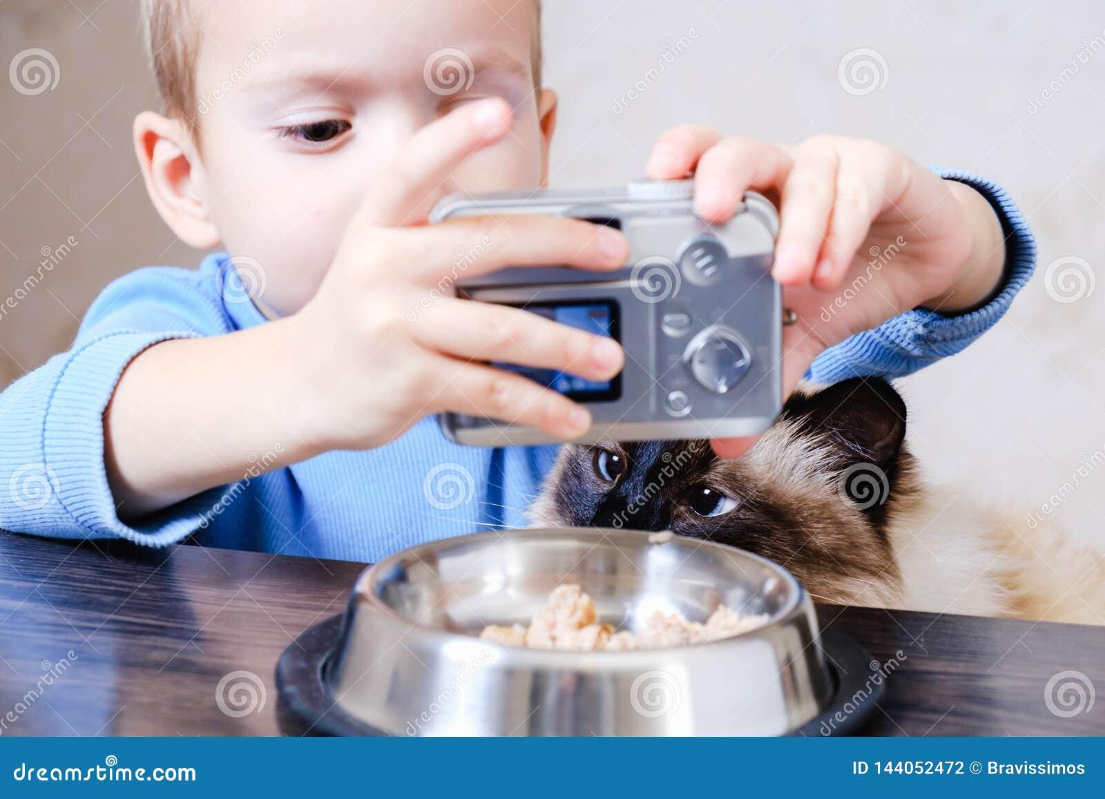 Kamera kota selfie fotografia rozochocona pet