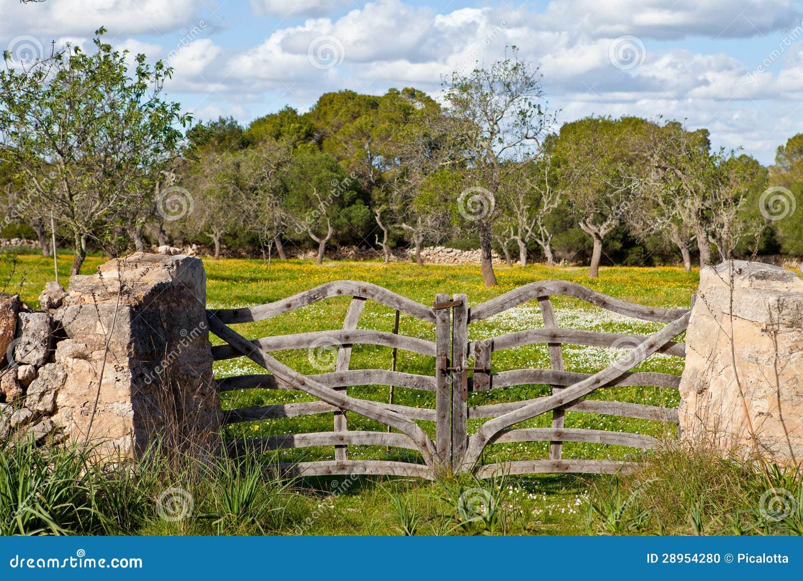 Kamienna ściana z nieociosaną bramą