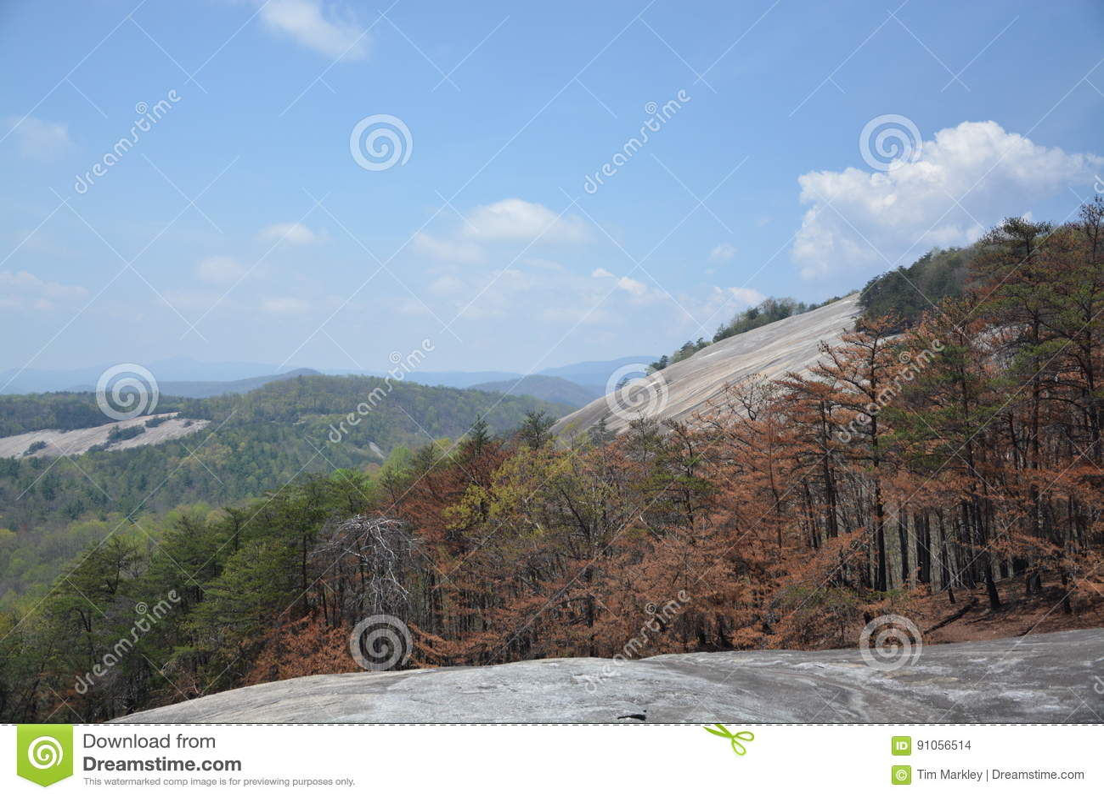 Kamienna góra
