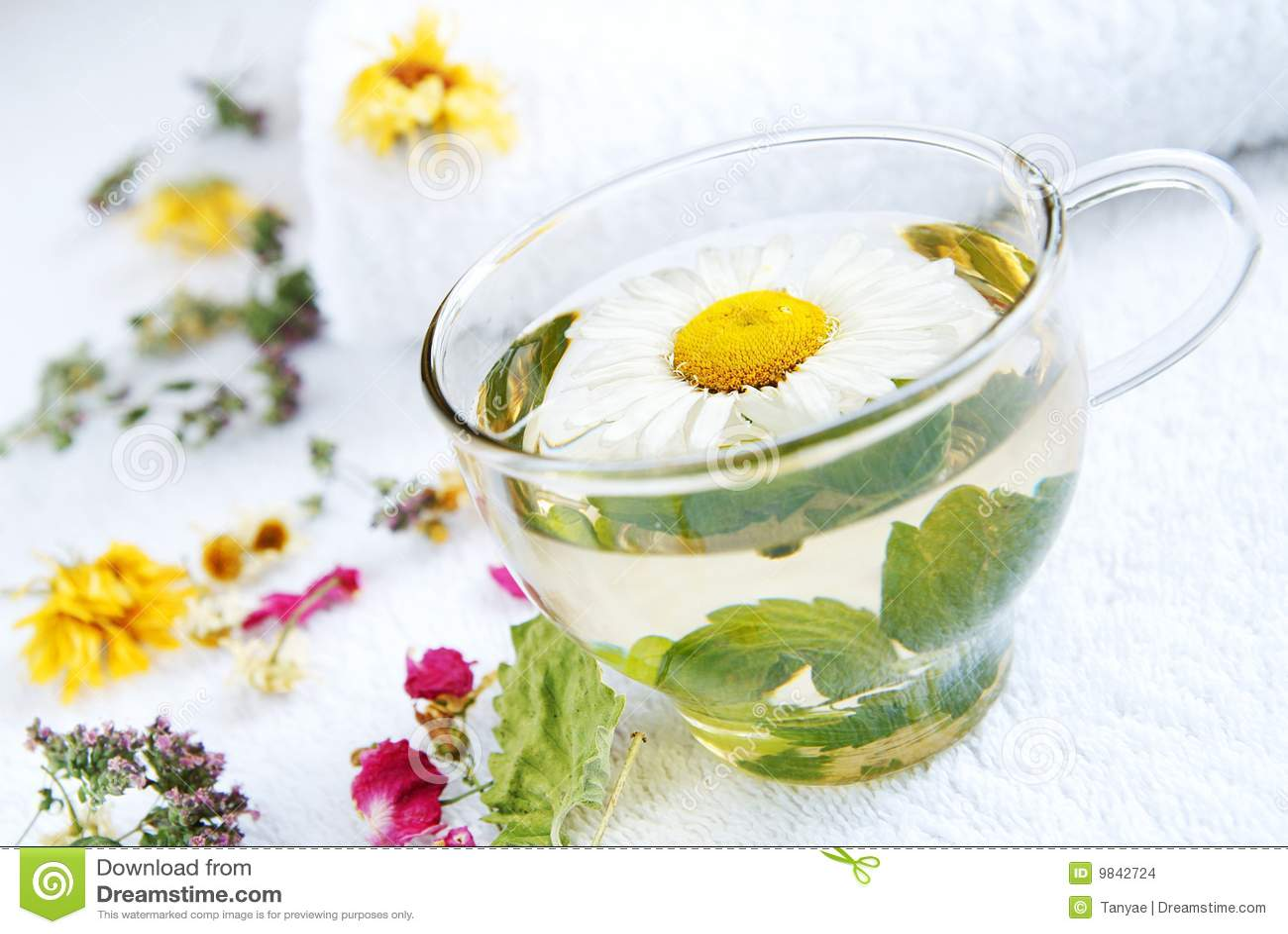 Kamille-munt medische thee