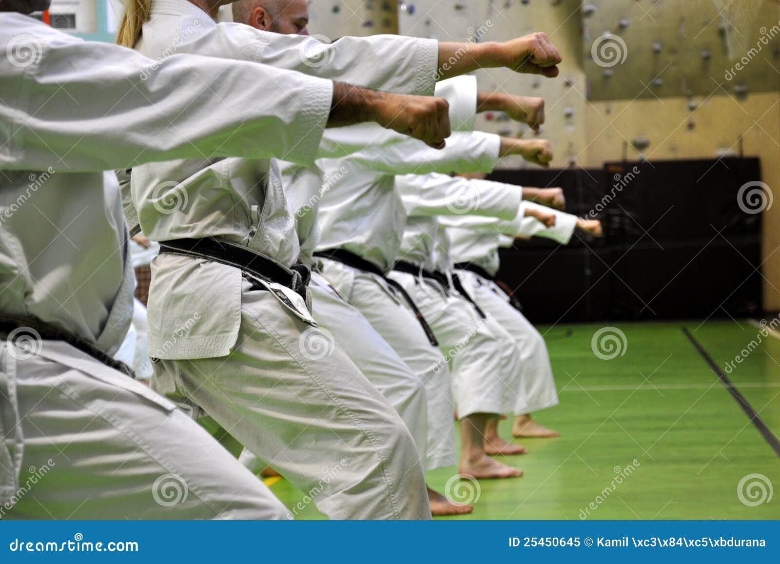 Kampfkunstkarate