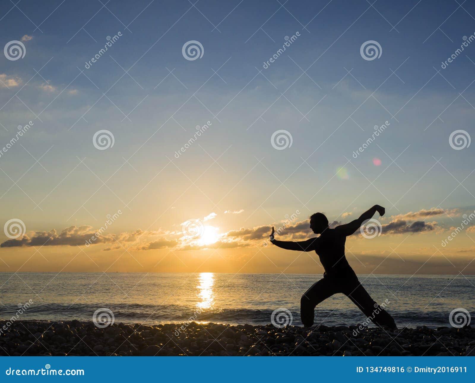 Kampsportmankontur på solnedgånghimmel på bakgrund