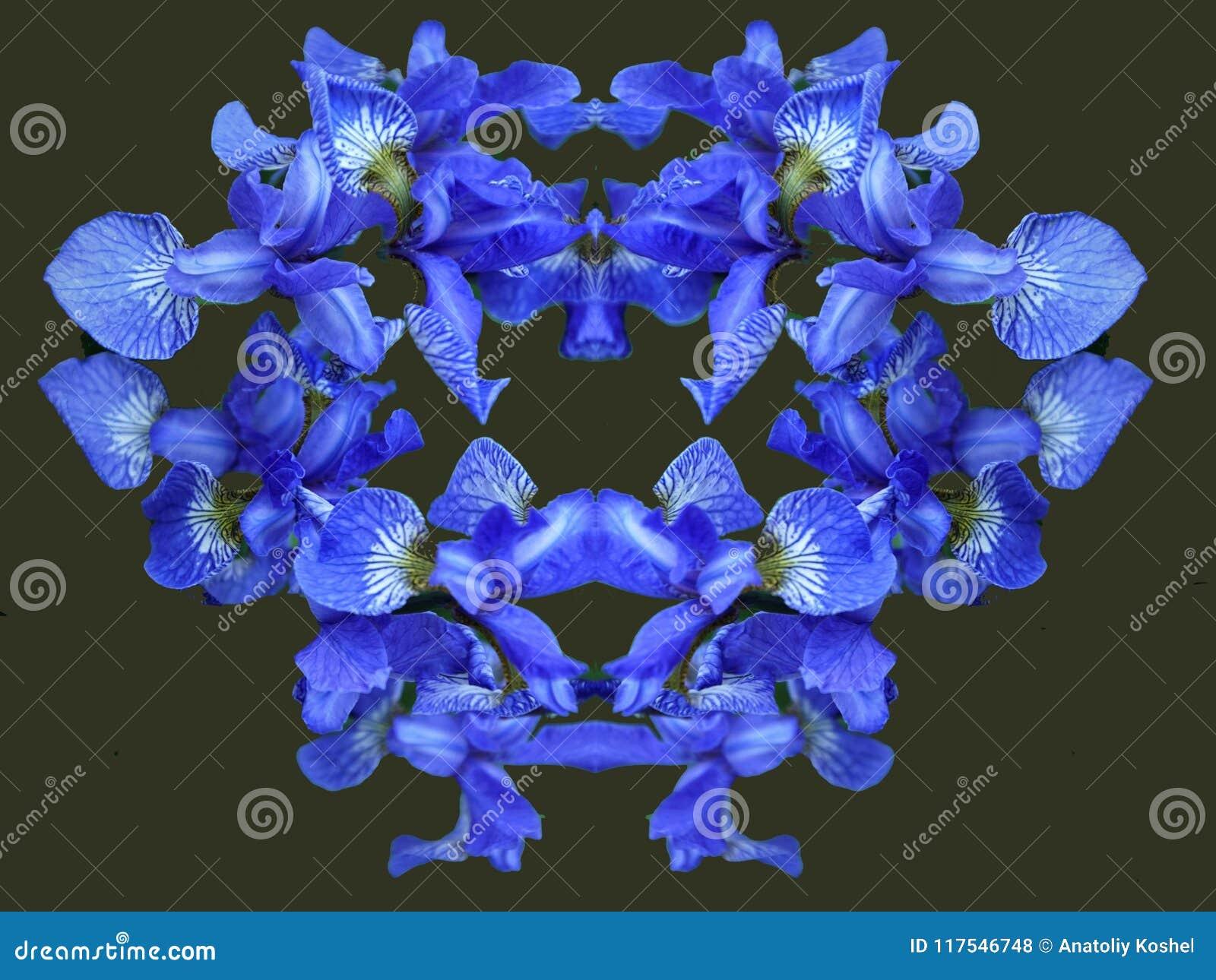 Kan användas som hälsningskortet för valentin dag, födelsedag blodsugare Färgar av sommar blommar petals _ brigham Droppar av dag