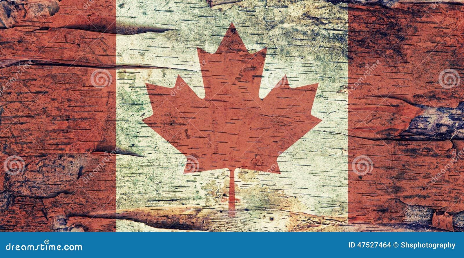 Kanada flagga på björkskäll