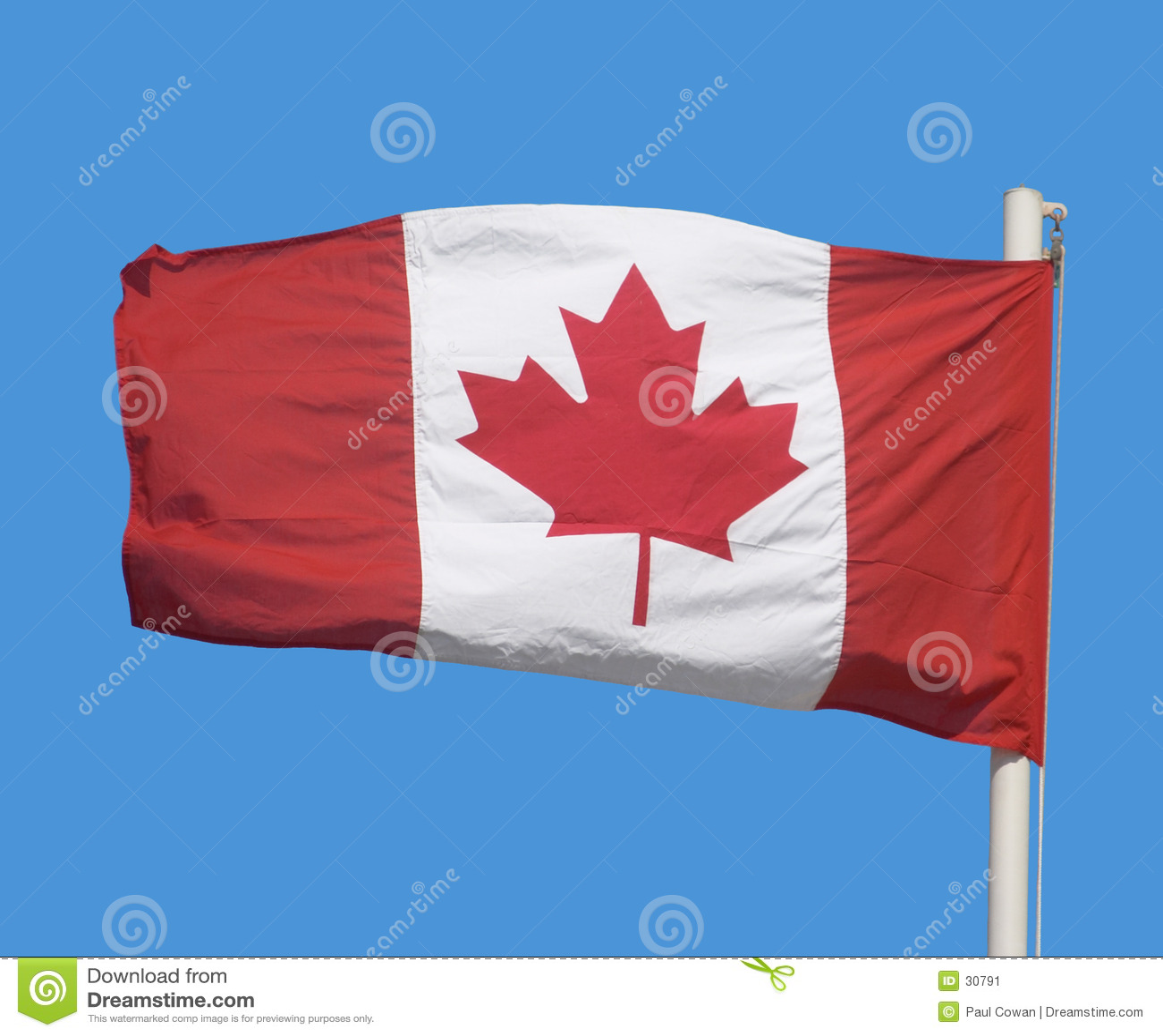 Kanadensisk flagga