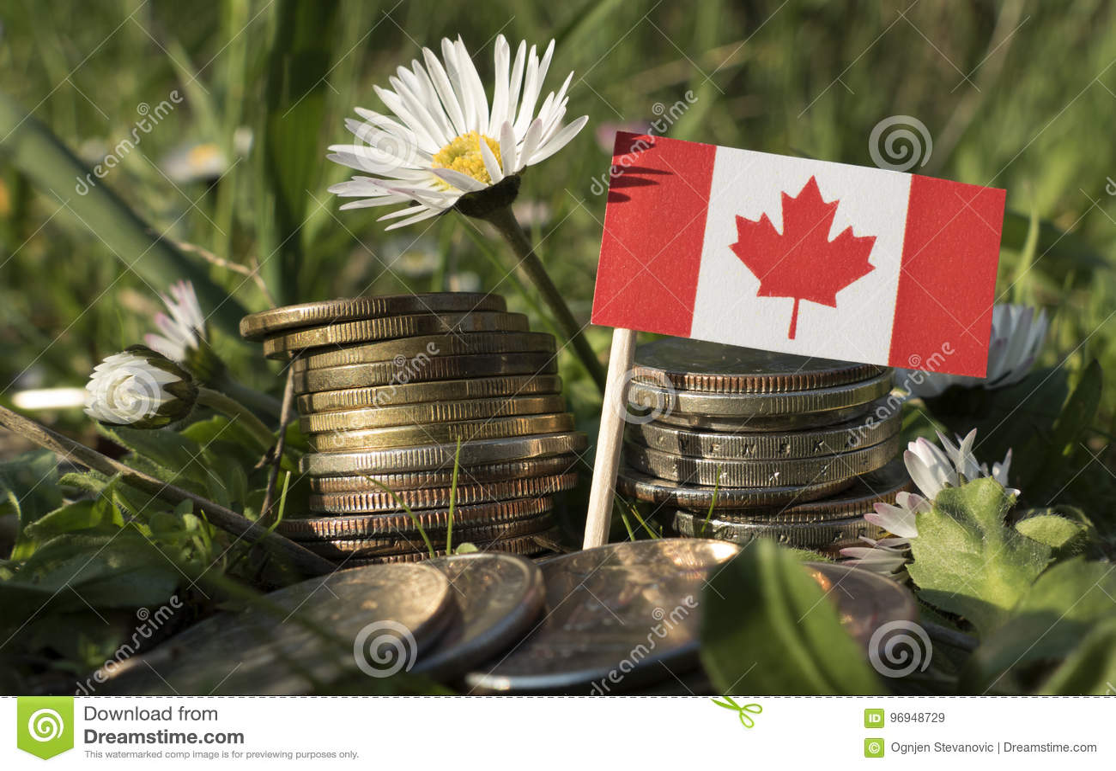 Kanadische Flagge mit Stapel Geld prägt mit Gras