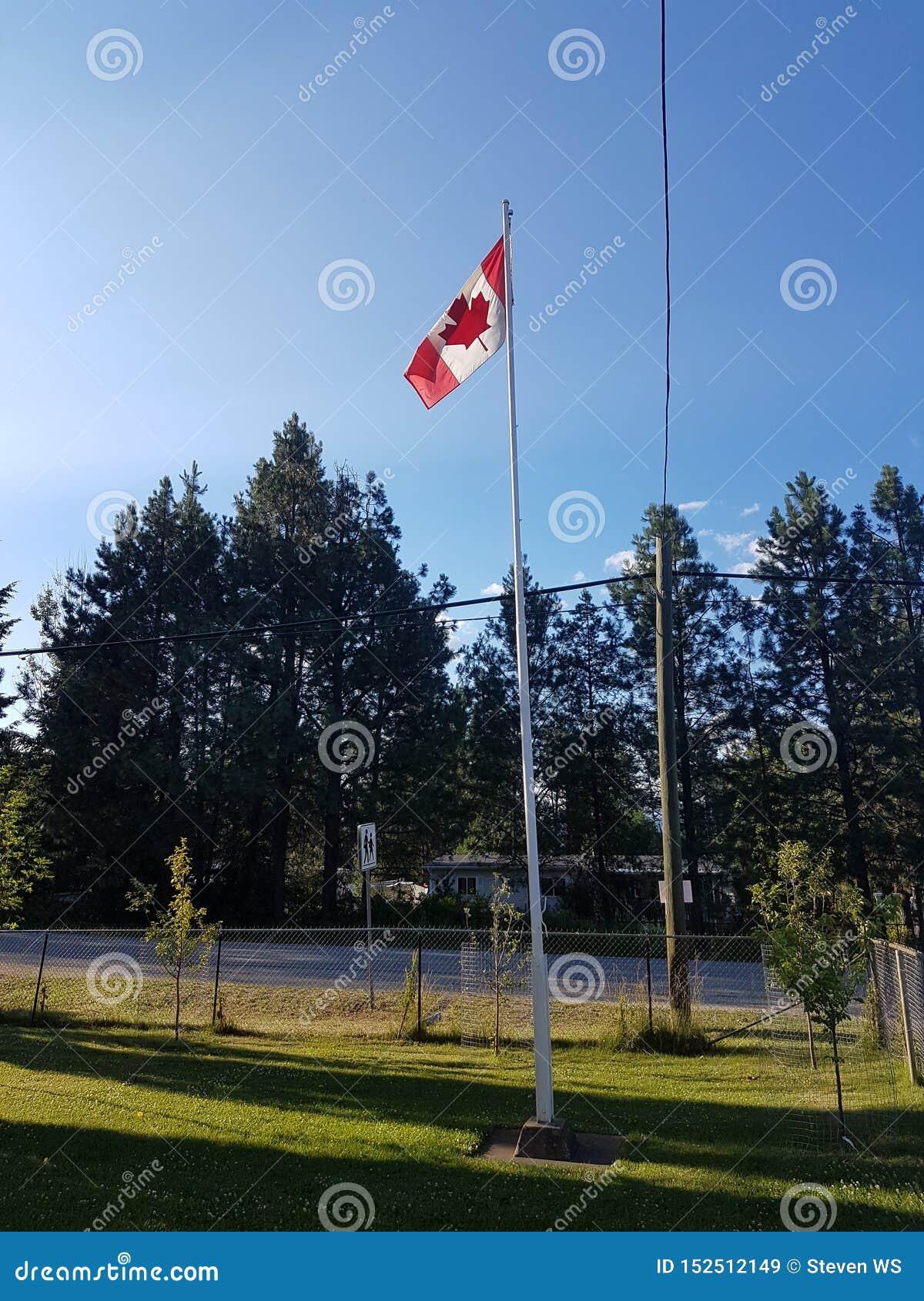Kanadyjczyk flaga w Szkolnym jardzie