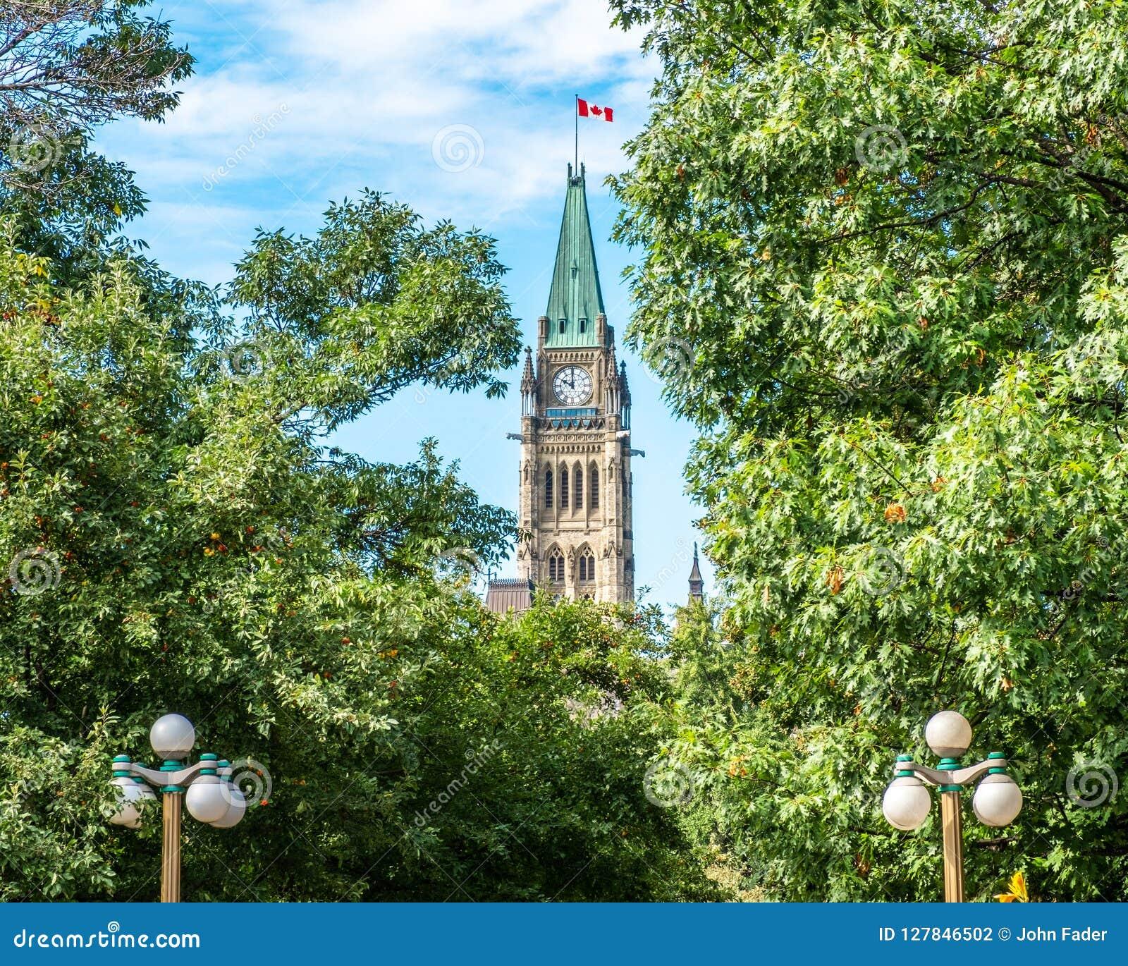 Kanadyjski parlamentu pokoju wierza wśród drzew
