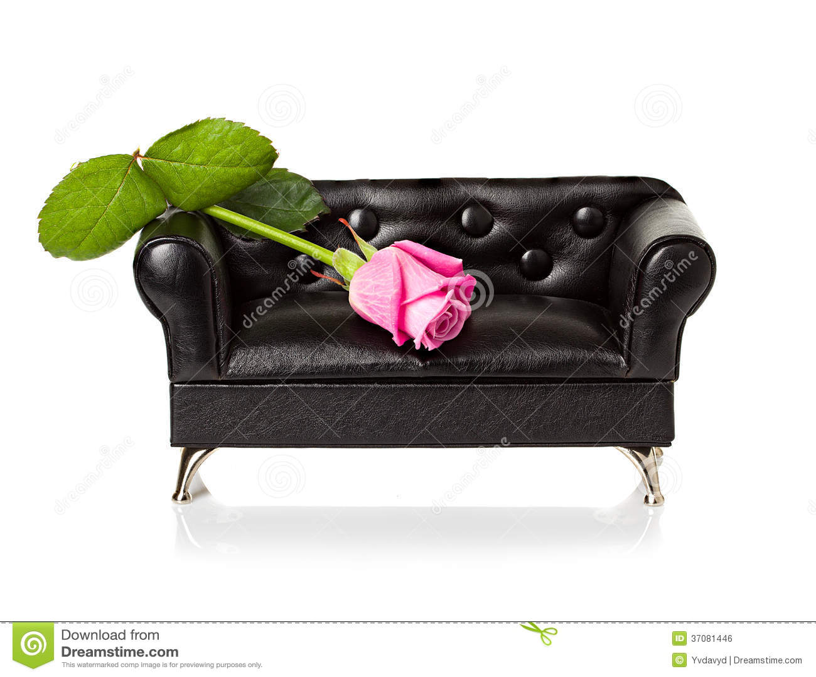 Download Kanapa z czerwieni różą zdjęcie stock. Obraz złożonej z wyznaczający - 37081446