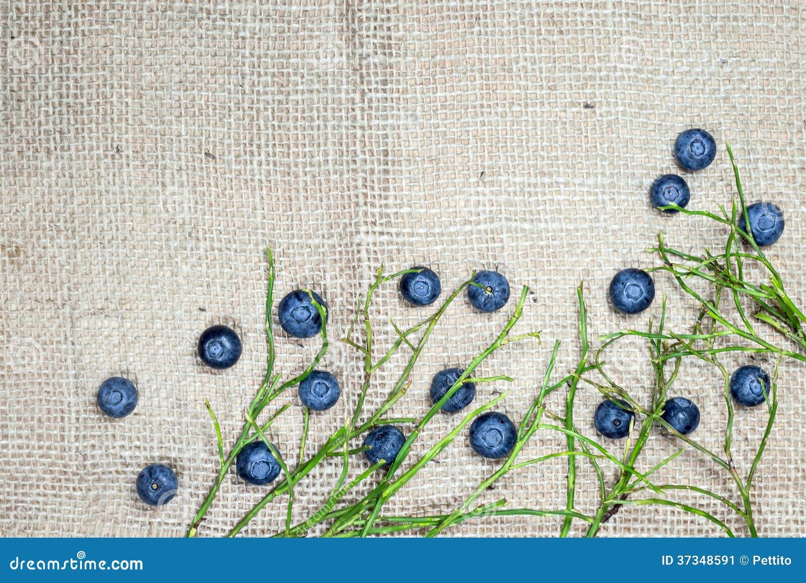 Kanfas med blåbär och ris
