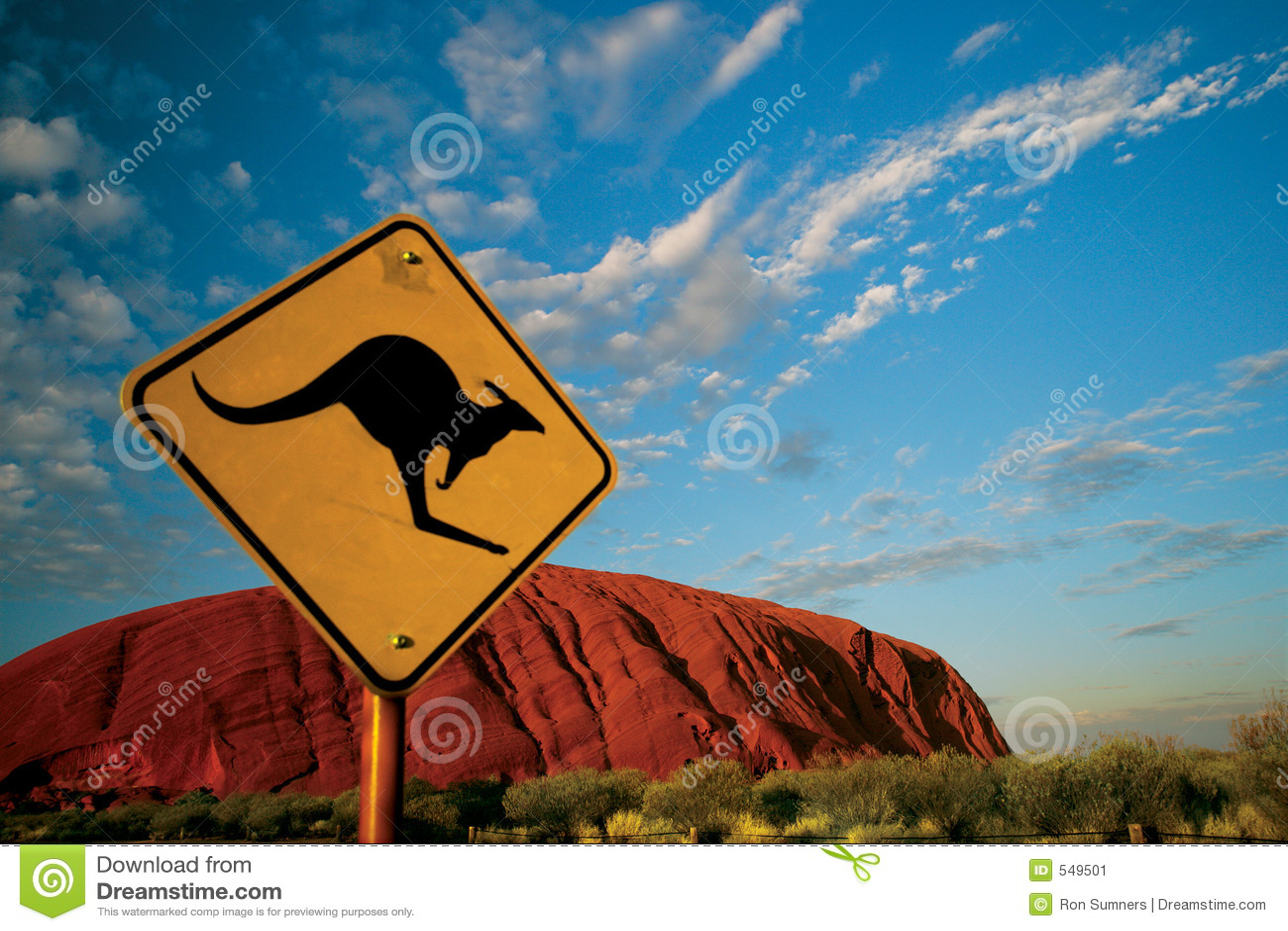 Kangaroo Ayers Rock