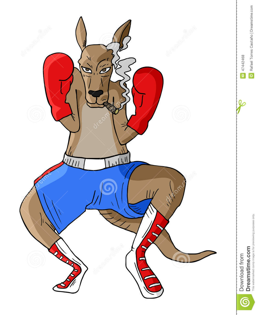 Kangaroo With Gloves And Flag Royalty-Free Stock Photo ...
