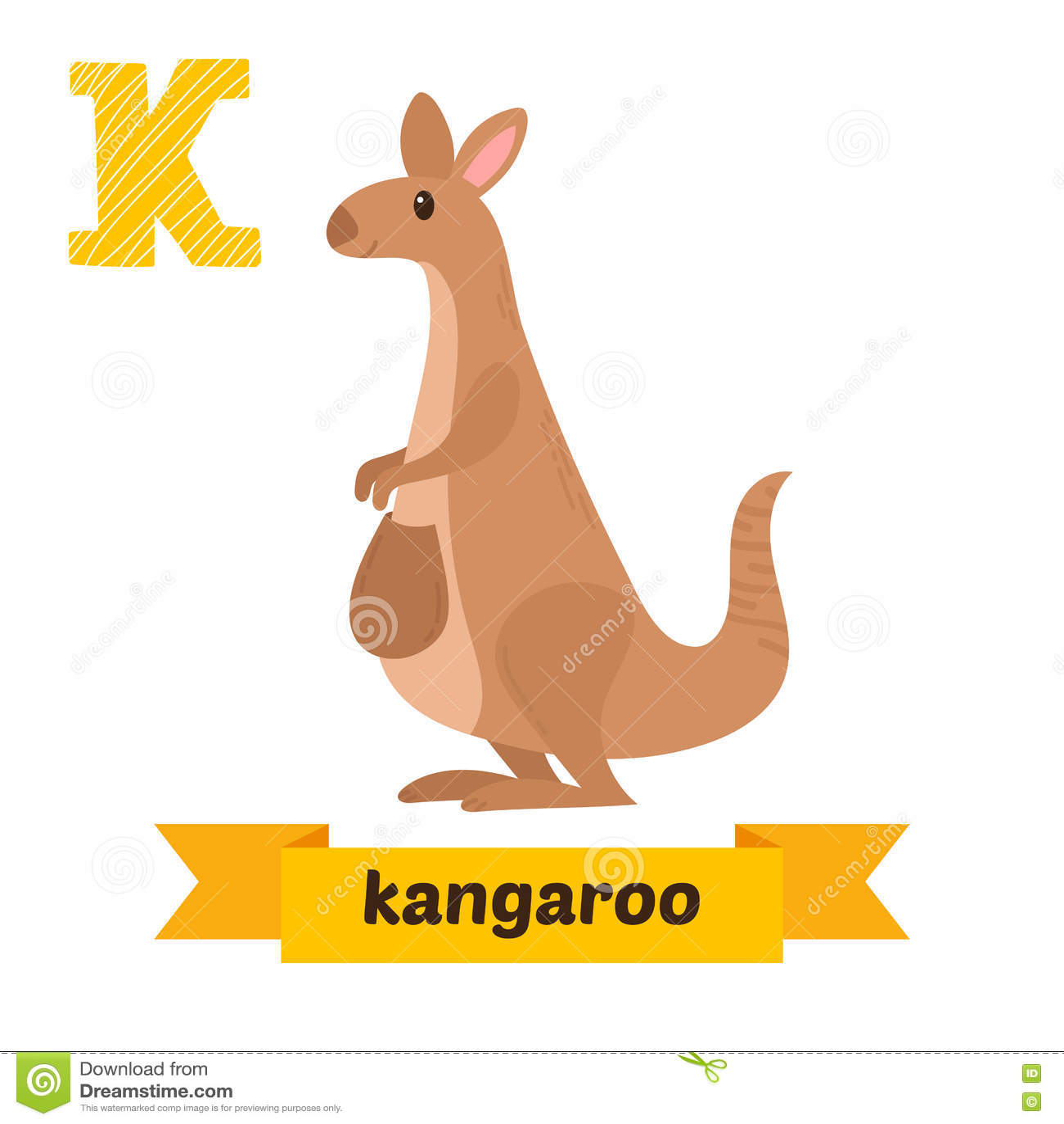 kangaroo k letter cute children animal alphabet in vector fun