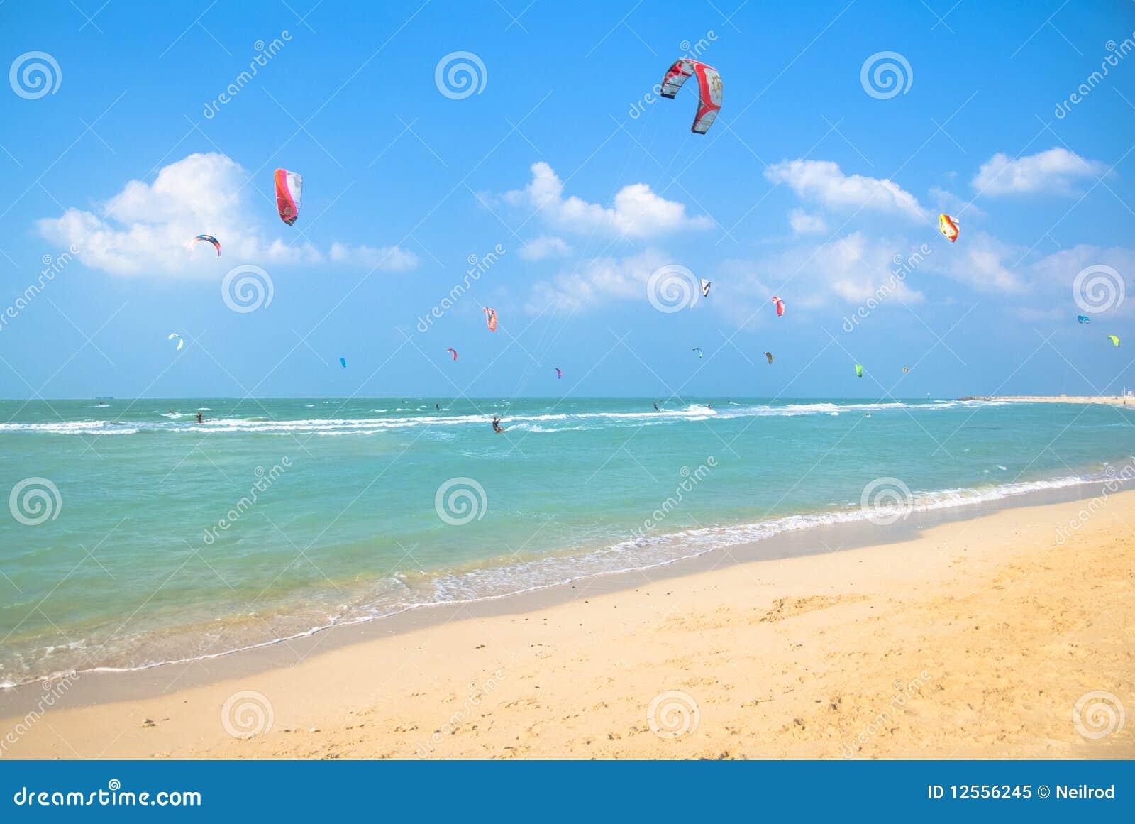 Kania surfing