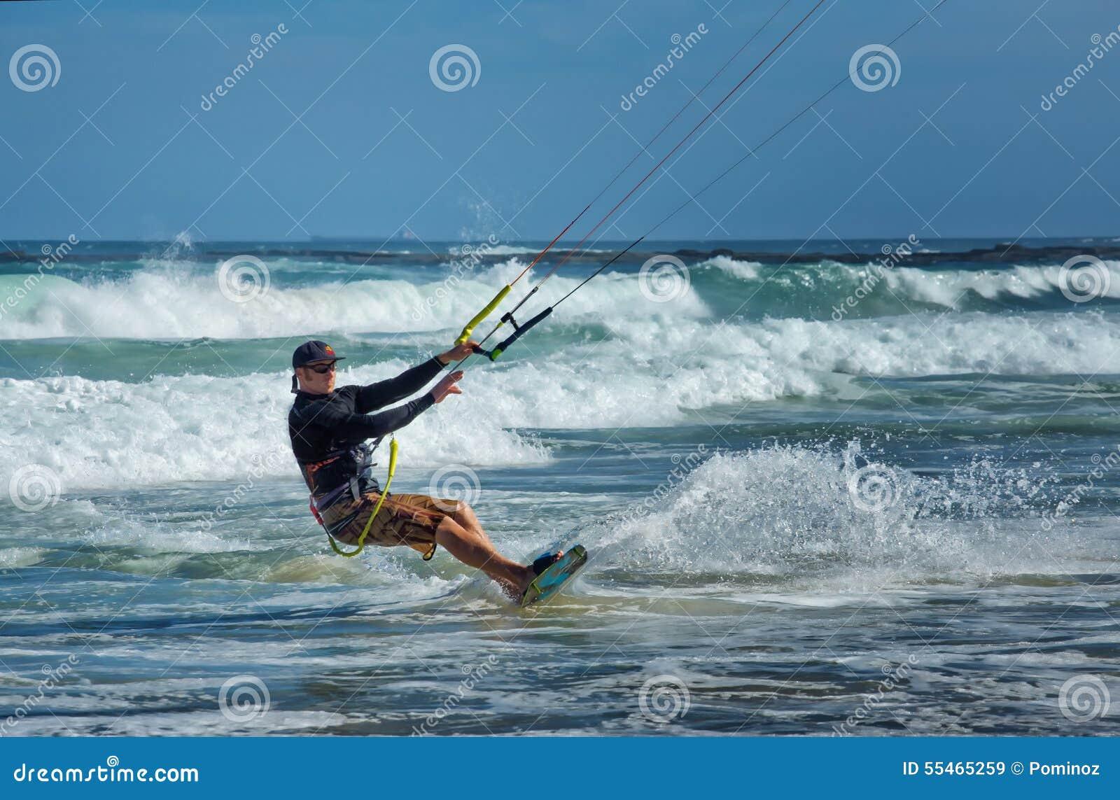Kania surfingowiec w Australia
