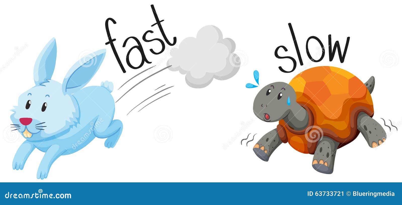 Kaninchen läuft schnell und Schildkröte lässt langsames laufen