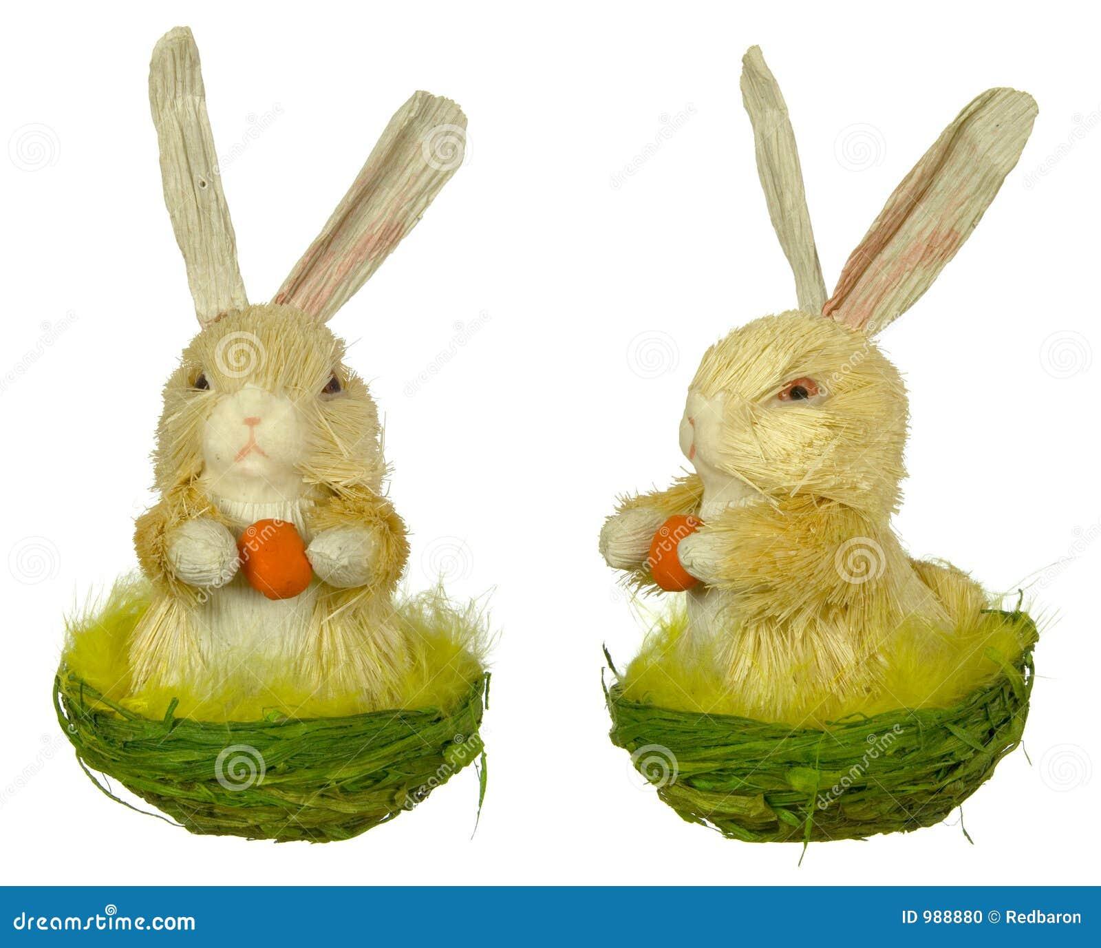 Kanineaster hare