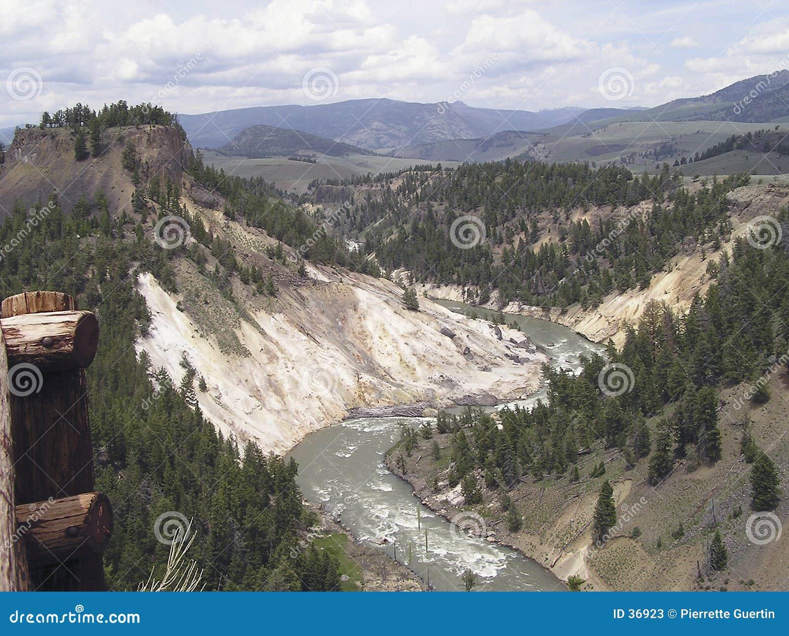 Kanjon yellowstone